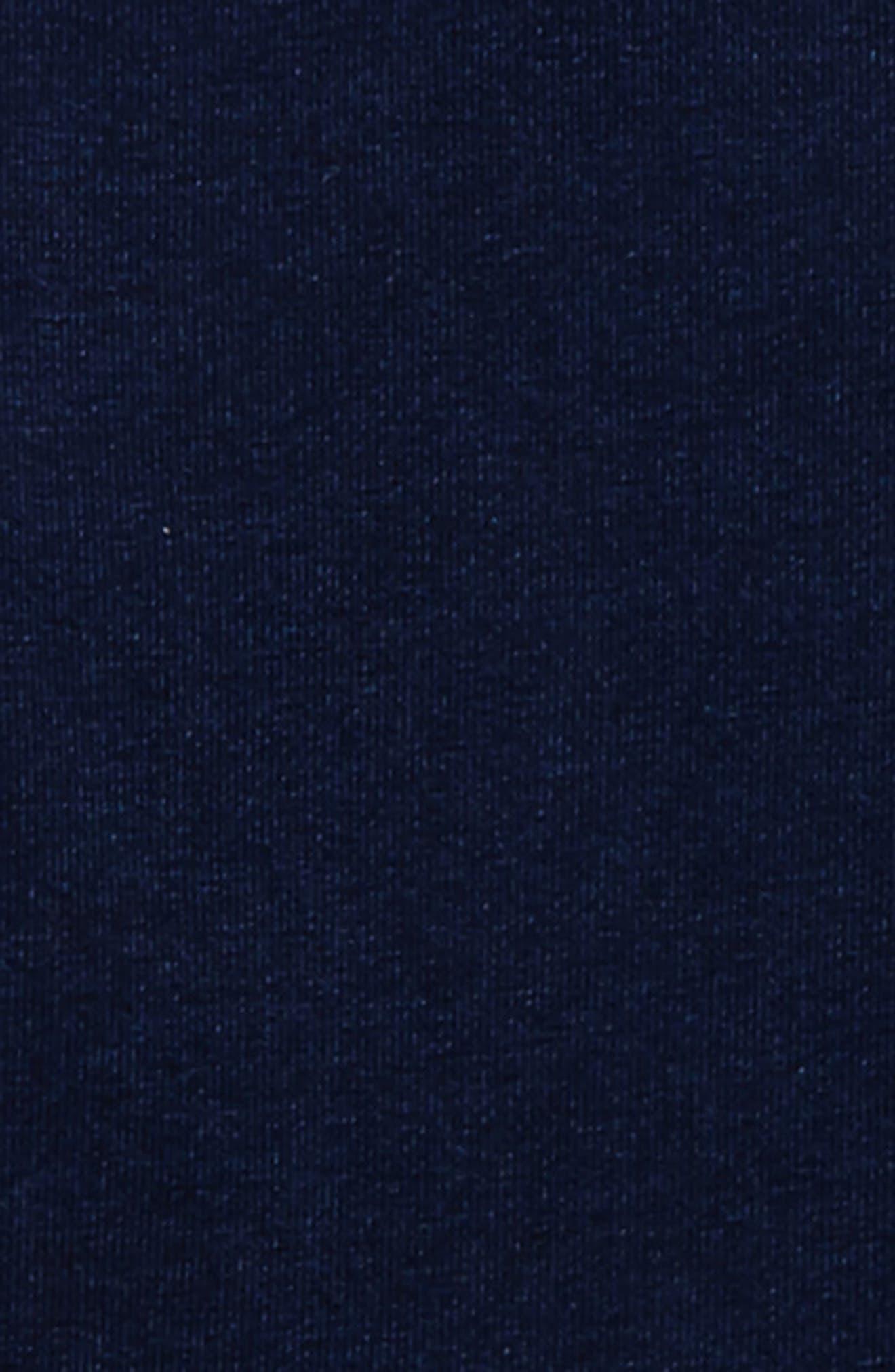 ag adriano goldschmied Grayson Raglan Top,                             Alternate thumbnail 2, color,                             490