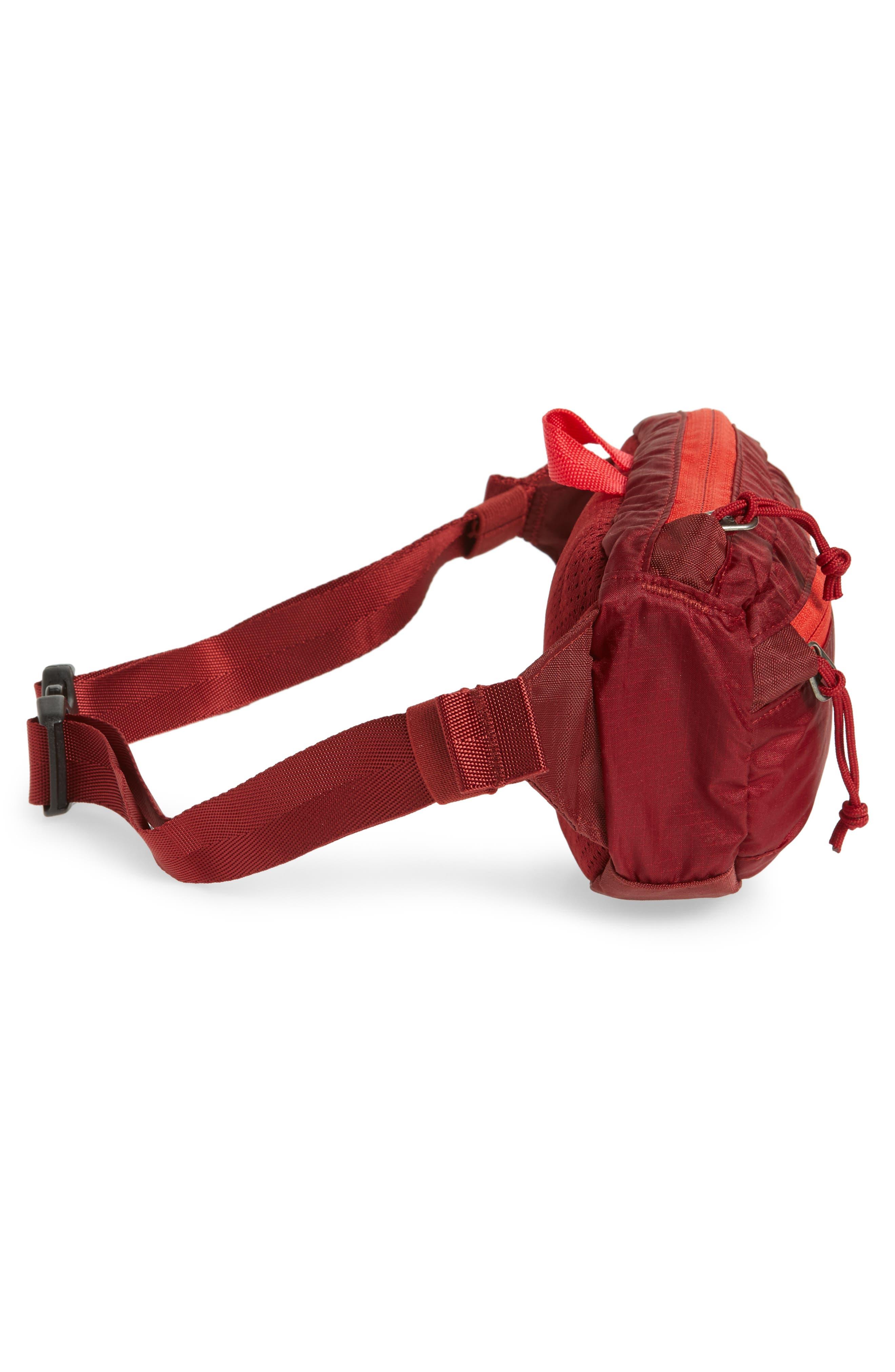 Travel Belt Bag,                             Alternate thumbnail 28, color,
