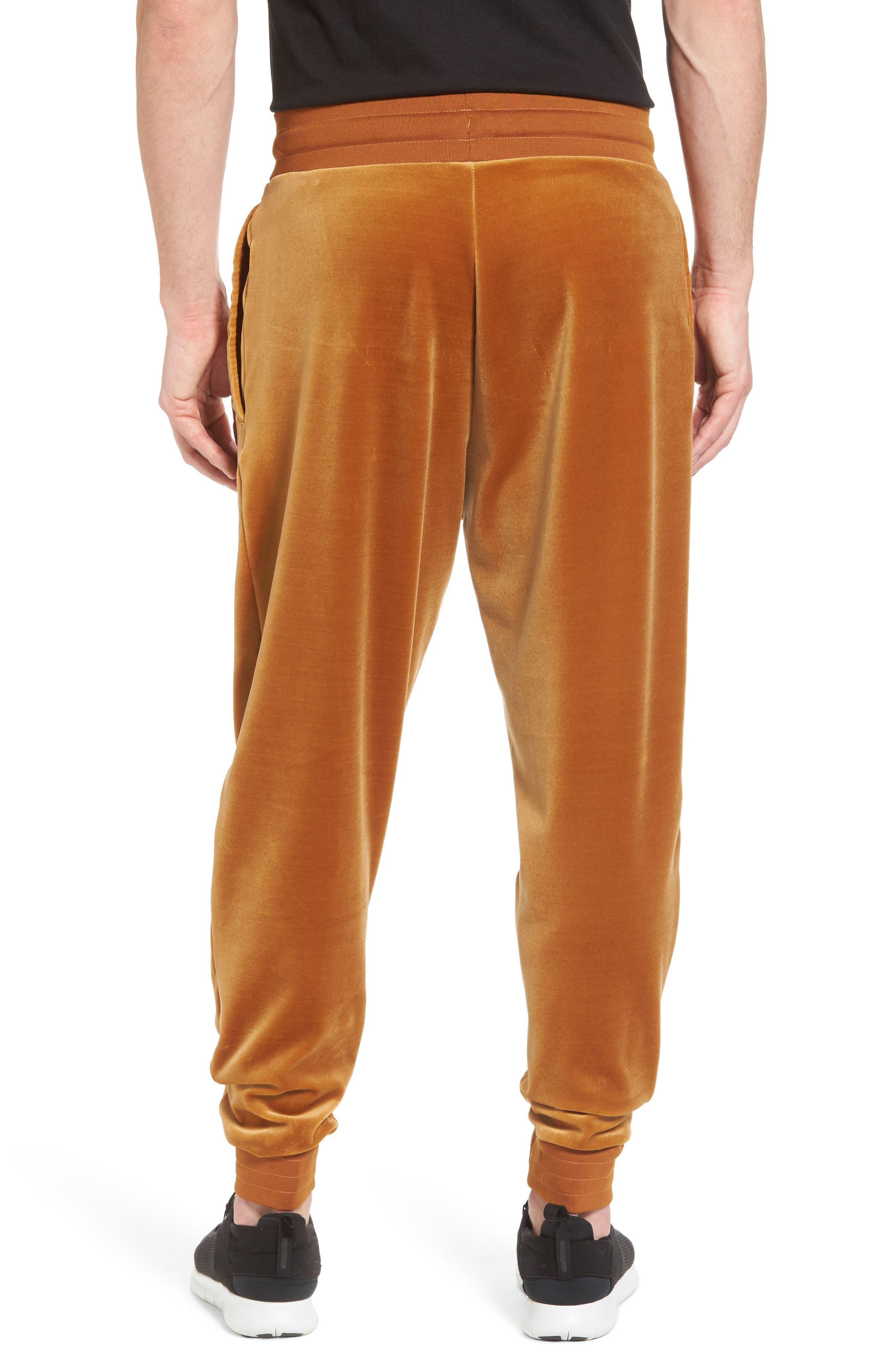 NIKE,                             Plush Velvet Jogger Pants,                             Alternate thumbnail 2, color,                             042