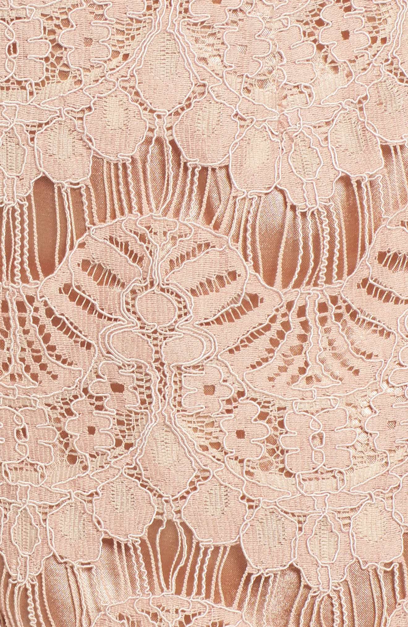 Lace Shorts,                             Alternate thumbnail 5, color,                             680