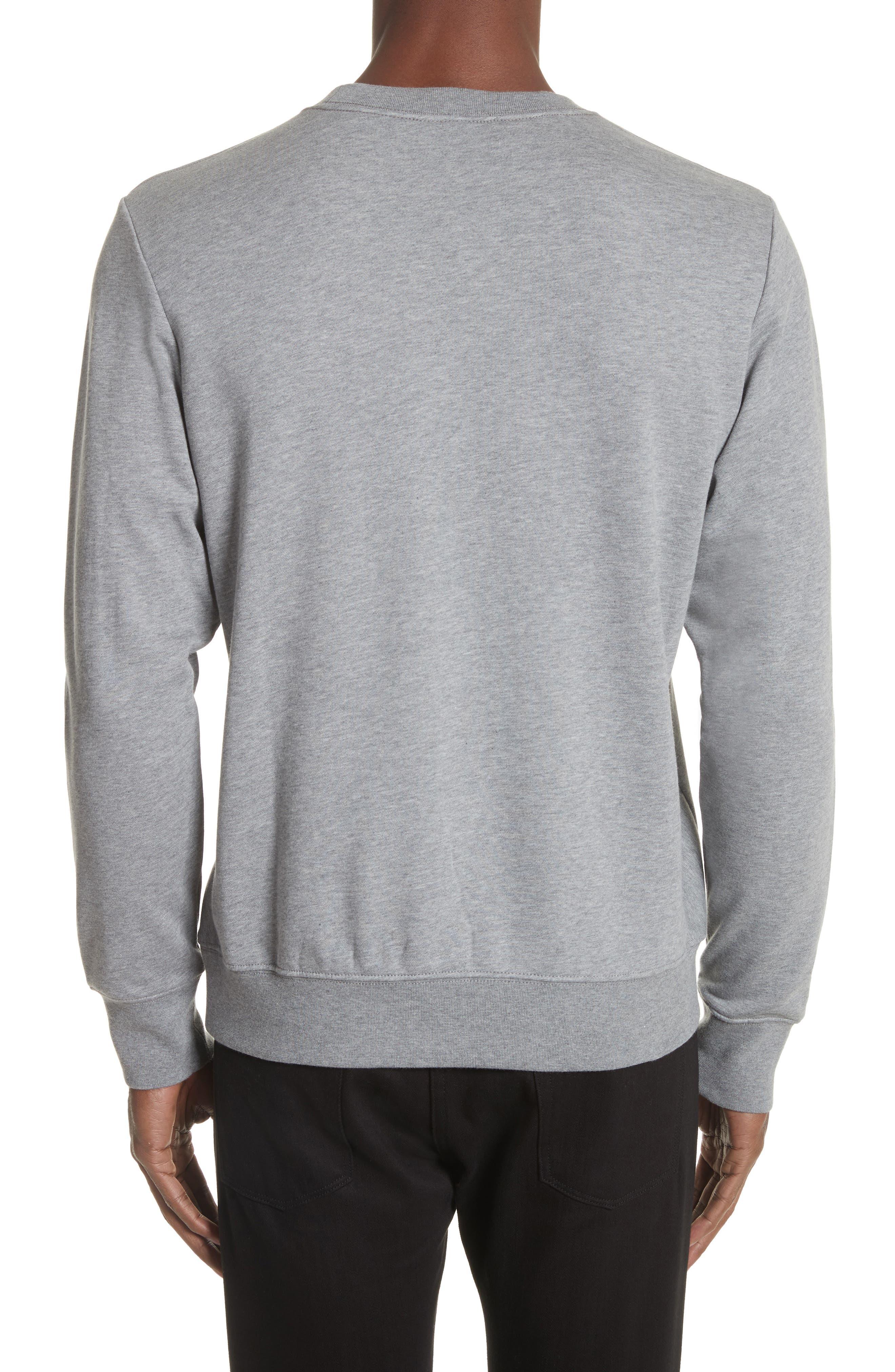 Dino Embroidered Crewneck Sweatshirt,                             Alternate thumbnail 2, color,
