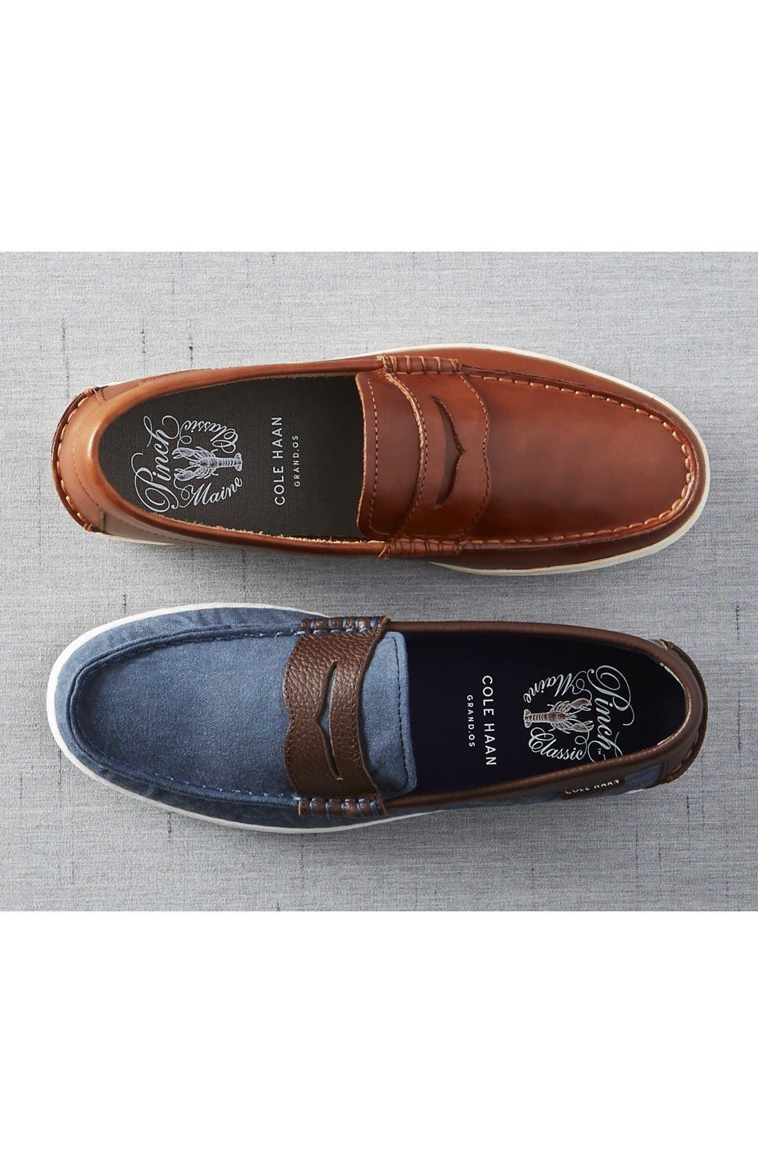 'Pinch' Penny Loafer,                             Alternate thumbnail 5, color,                             305