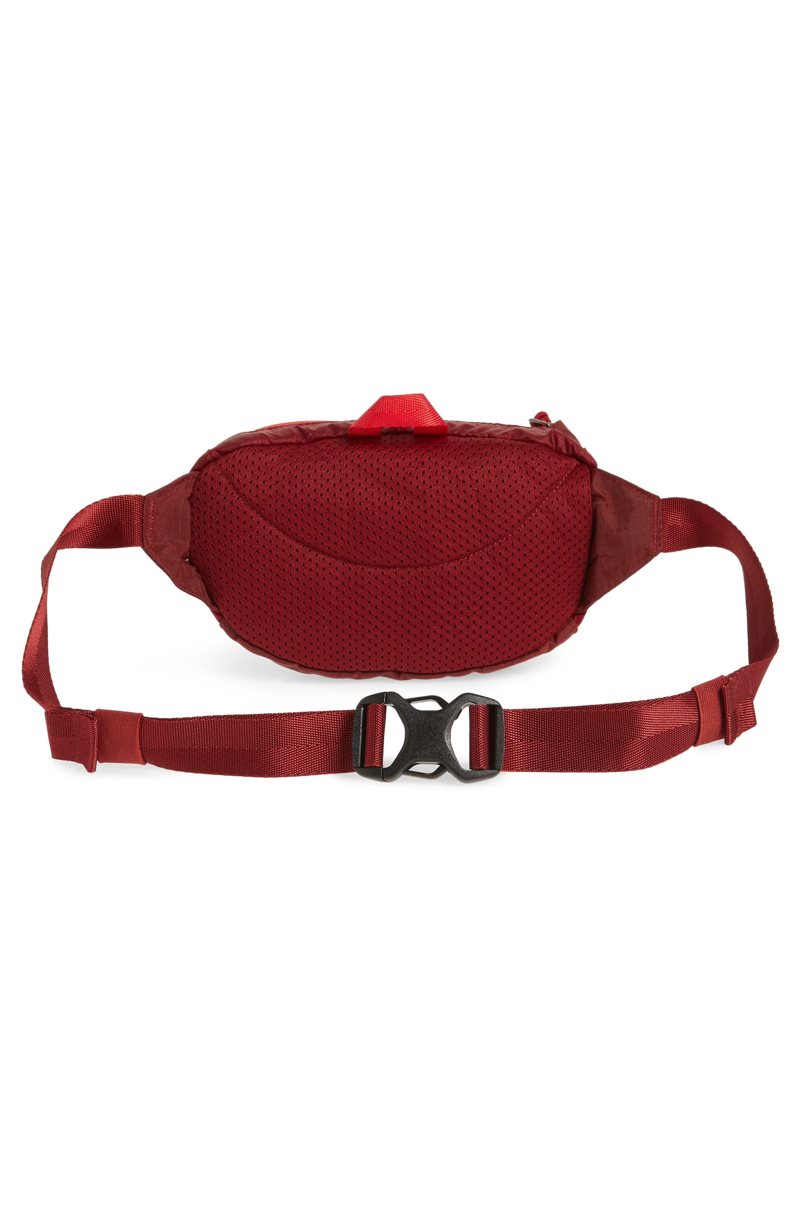 Travel Belt Bag,                             Alternate thumbnail 20, color,