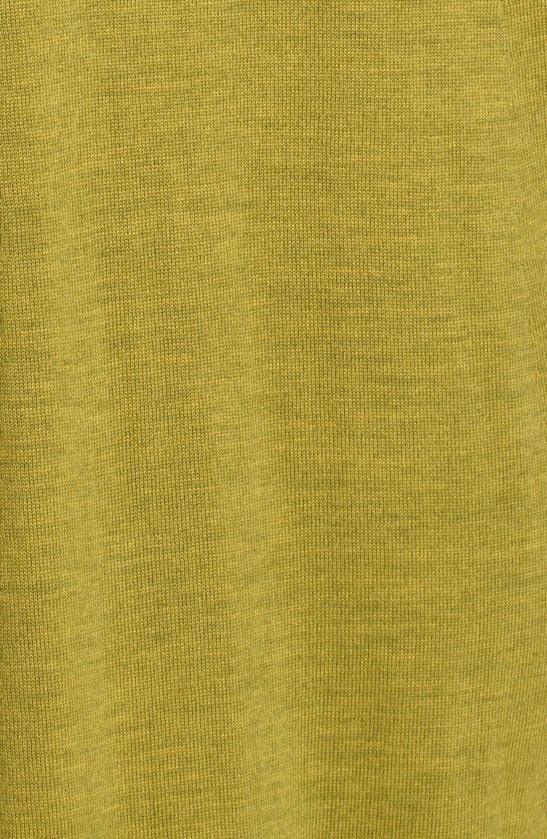 Lightweight Merino Jersey V-Neck Tunic,                             Alternate thumbnail 61, color,