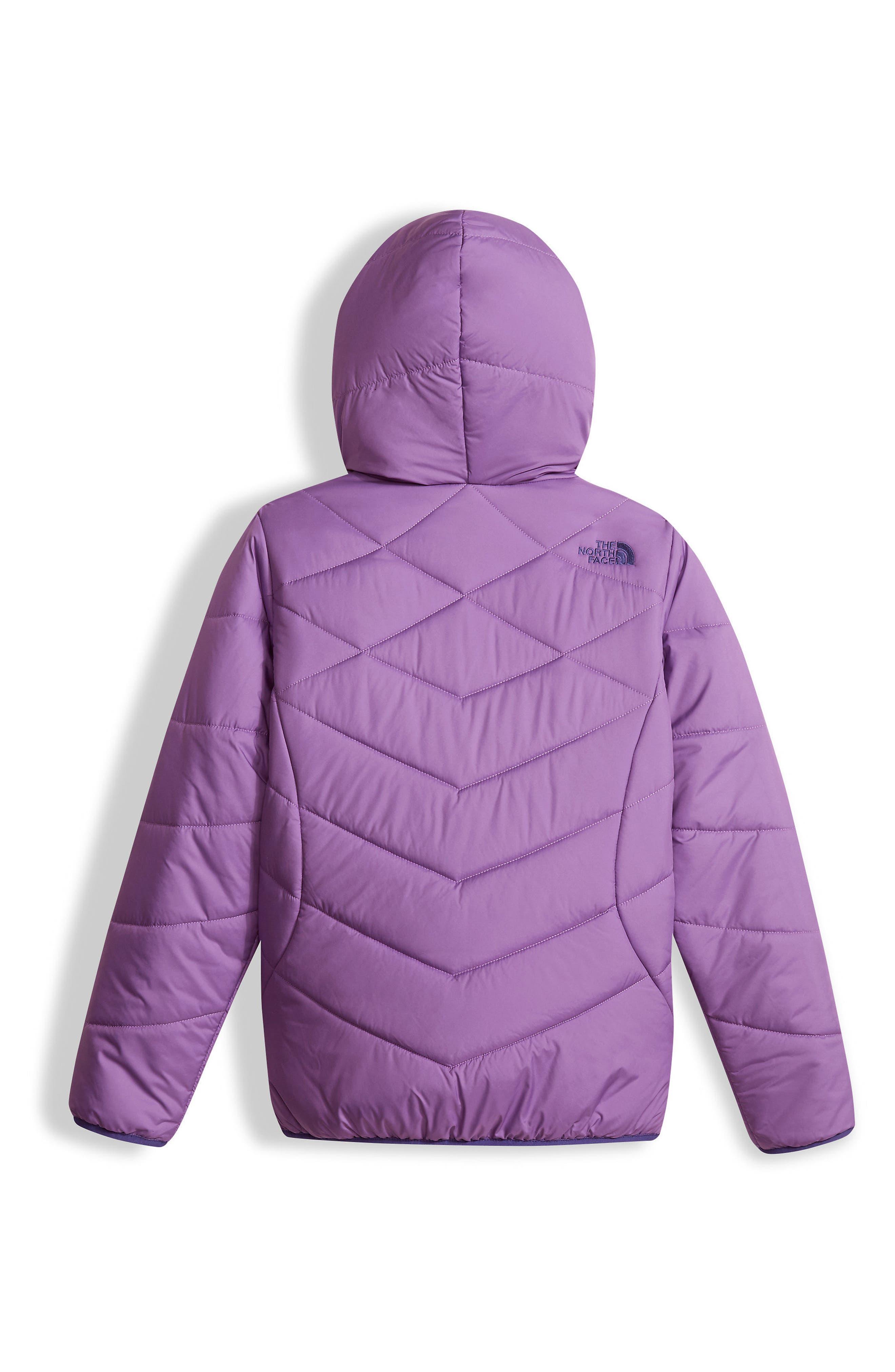 Perrito Reversible Hooded Jacket,                             Alternate thumbnail 17, color,