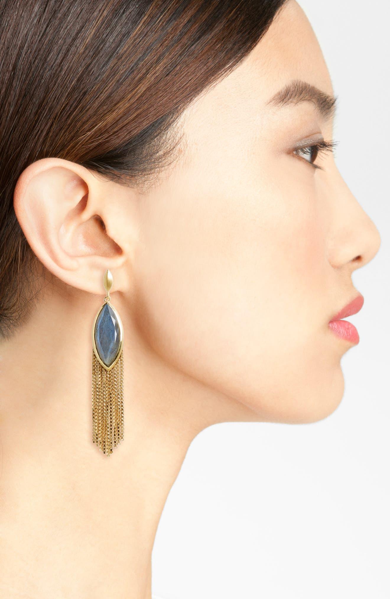 Ornate Semiprecious Stone Fringe Earrings,                             Alternate thumbnail 2, color,                             020