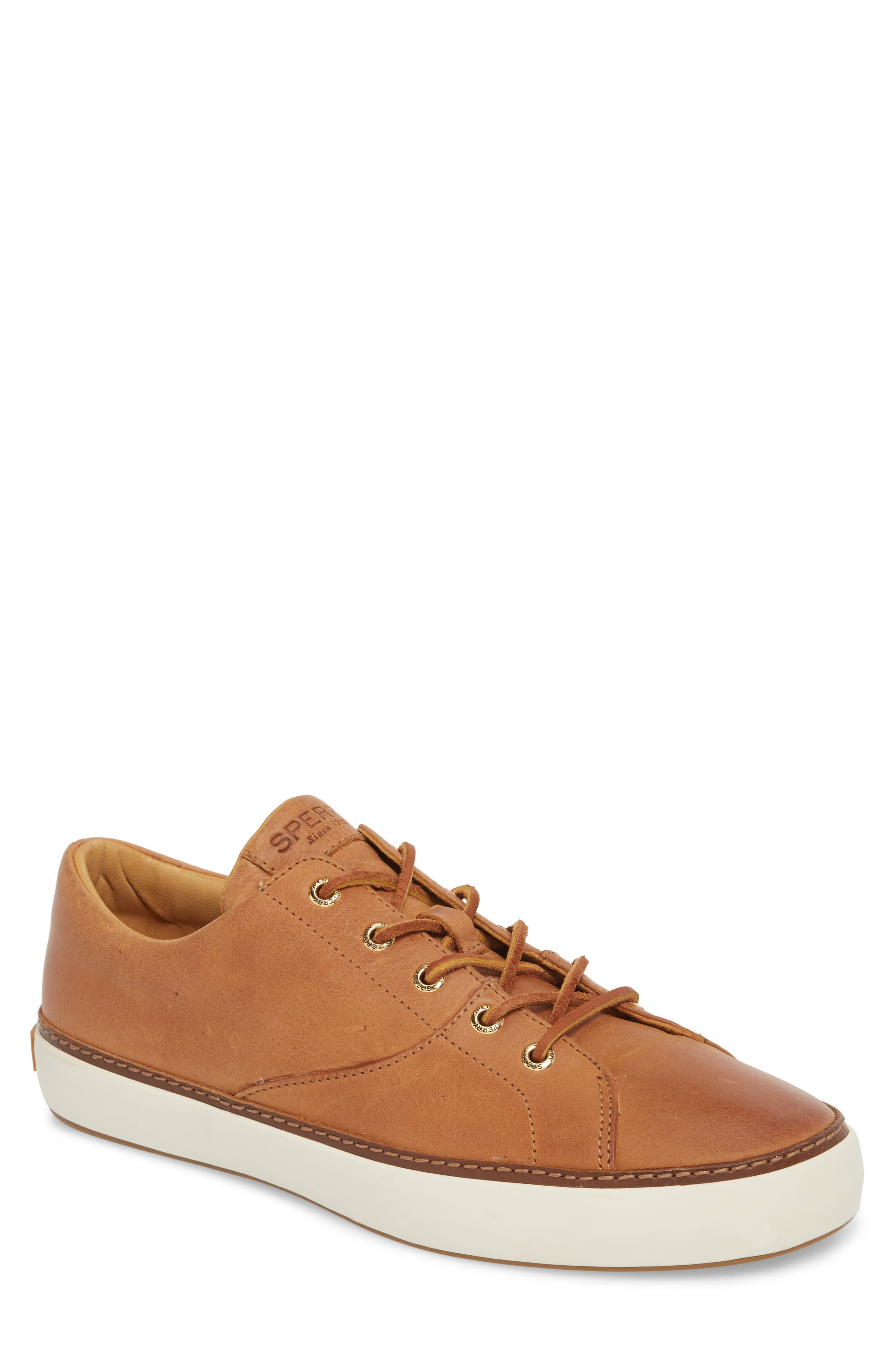 Sperry Gold Cup Haven Sneaker, Brown