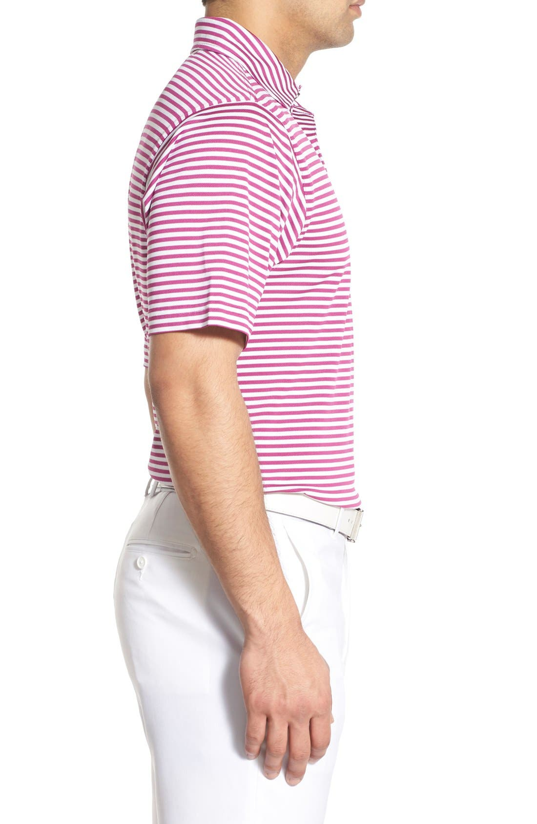 XH2O Feed Stripe Stretch Golf Polo,                             Alternate thumbnail 53, color,