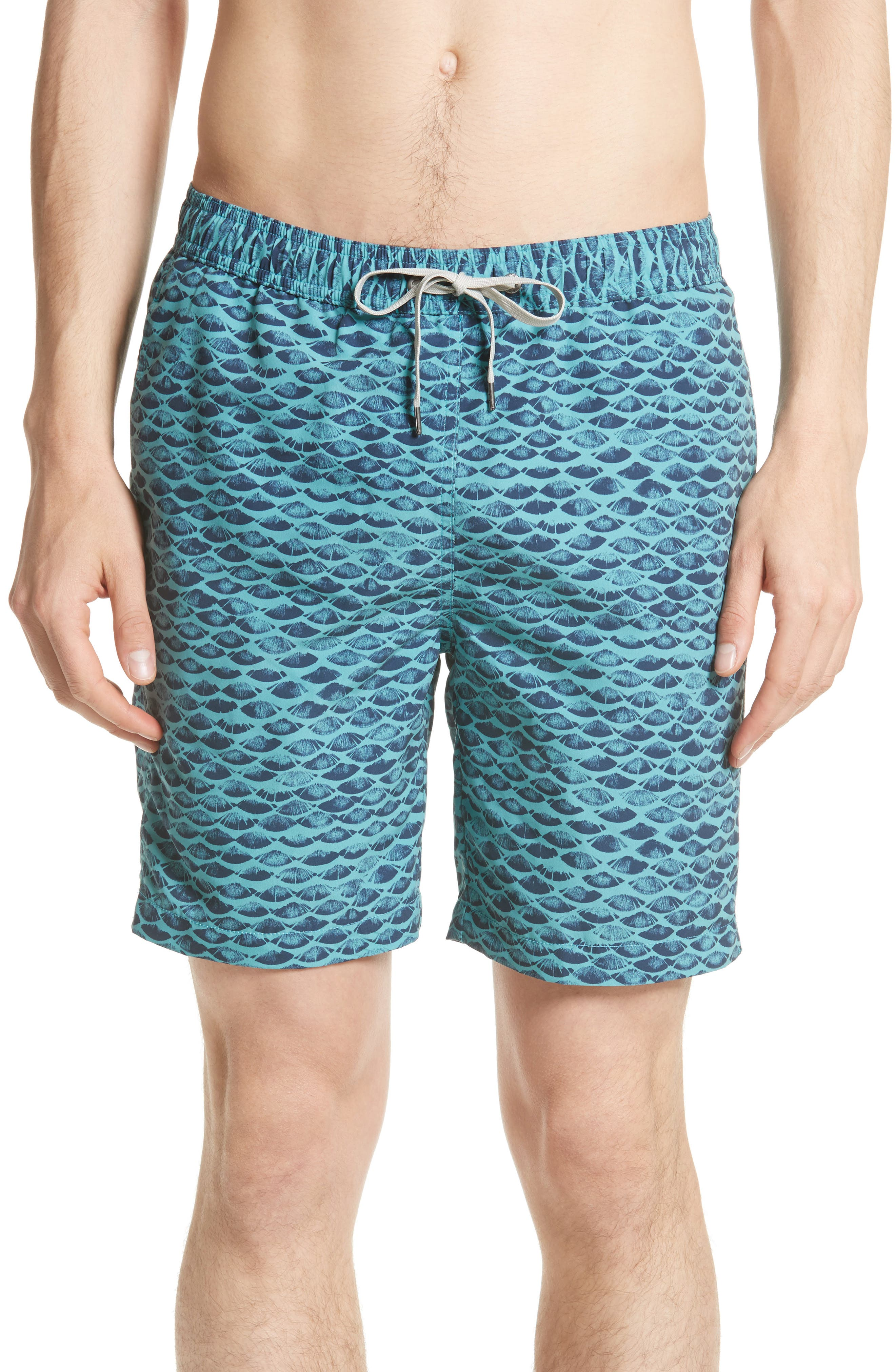 Charles Scales Swim Trunks,                             Main thumbnail 1, color,                             464
