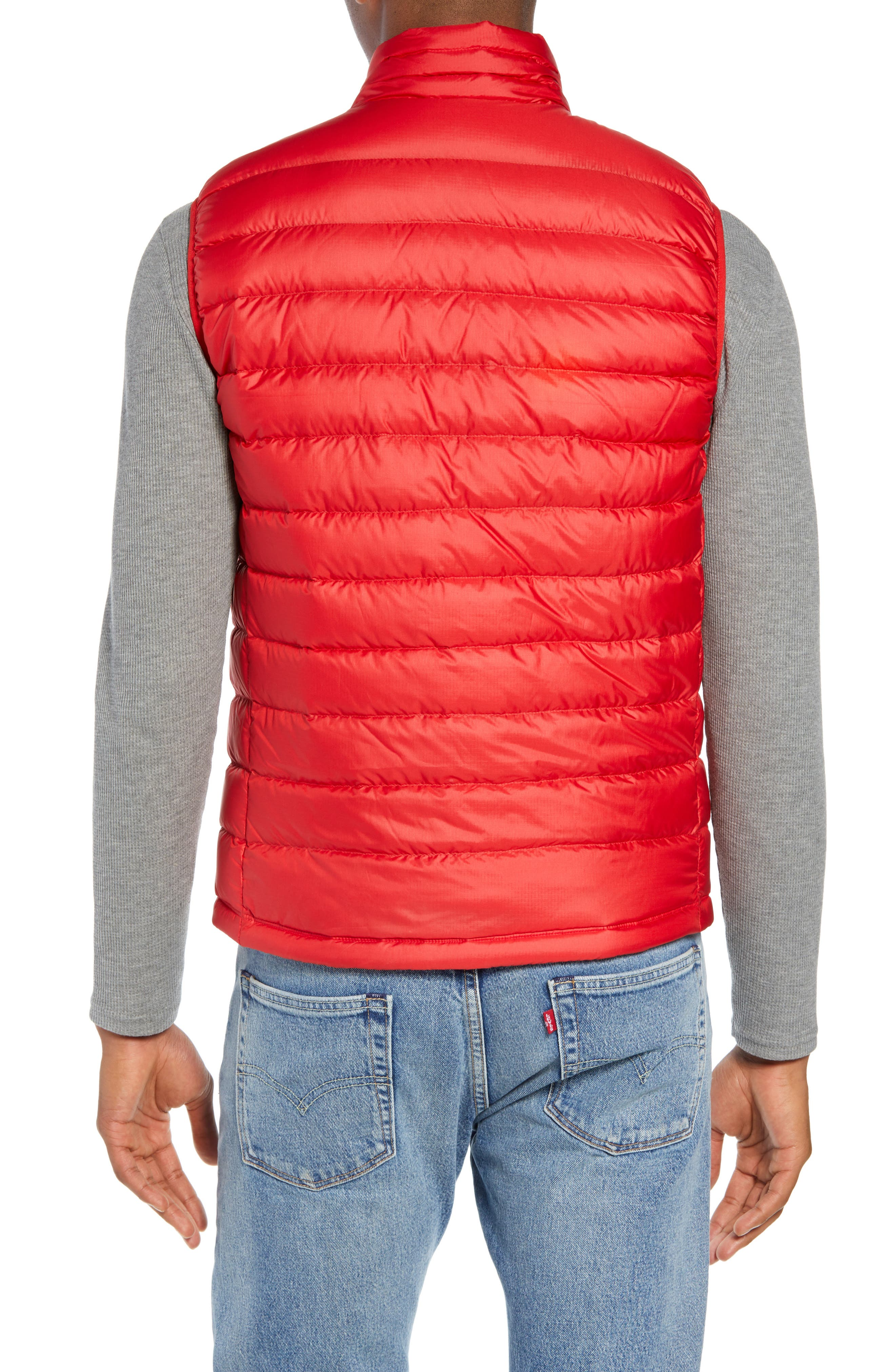 Windproof & Water Resistant 800 Fill Power Down Quilted Vest,                             Alternate thumbnail 14, color,