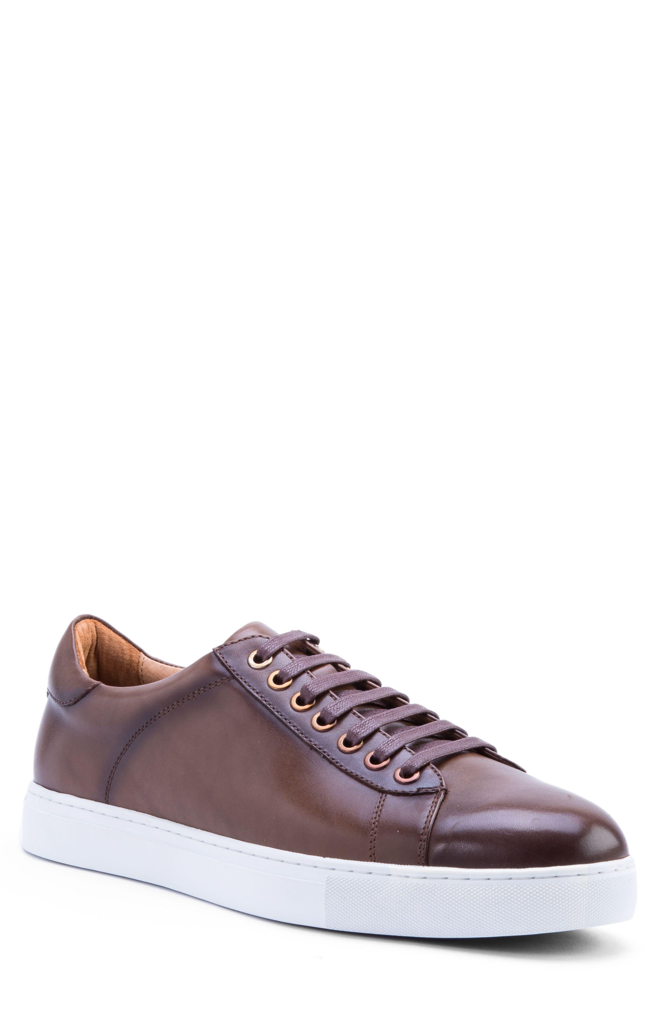 Zanzara Music Low Top Sneaker, Brown