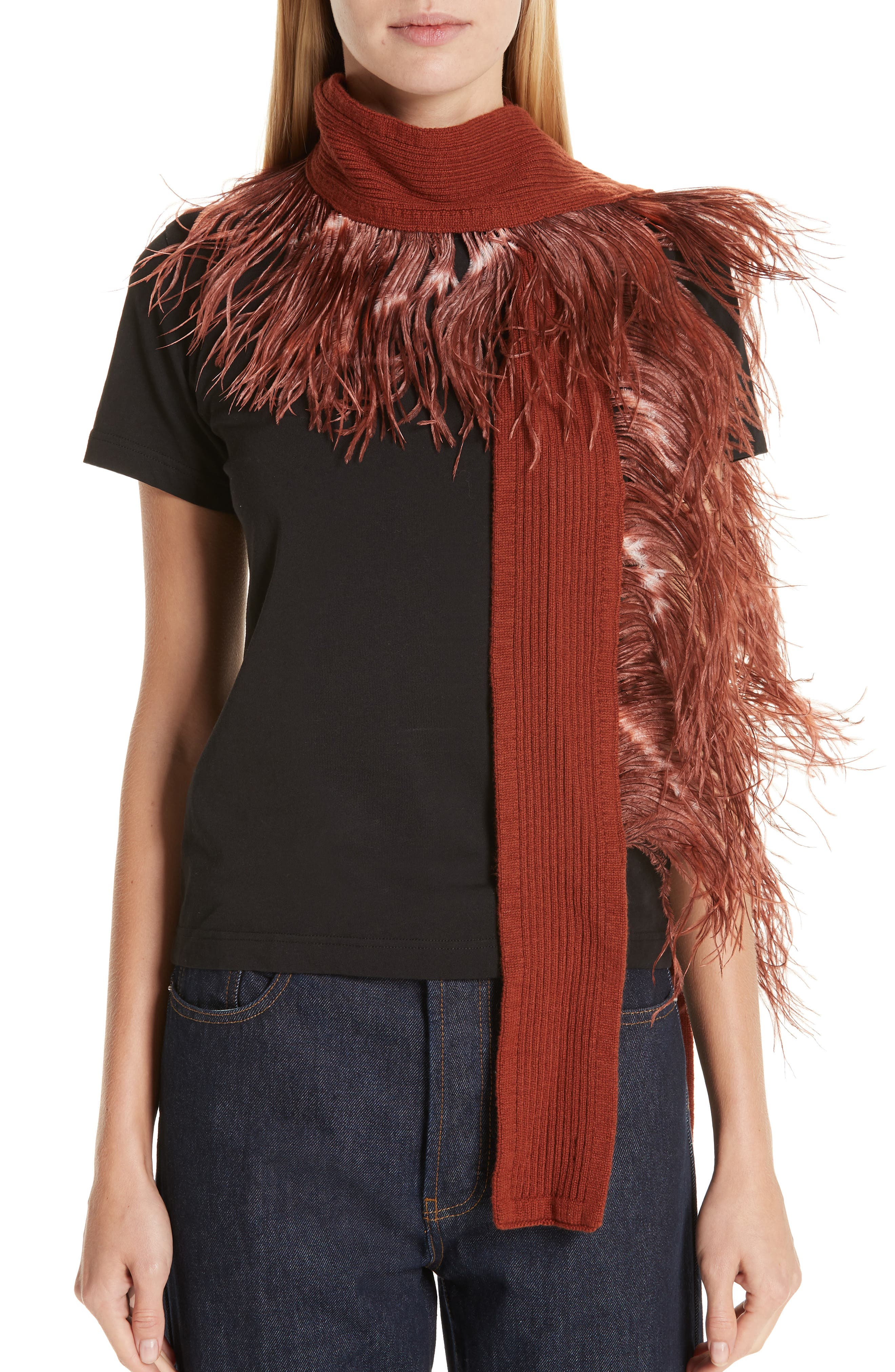Ostrich Feather Trim Cashmere Scarf,                             Alternate thumbnail 2, color,                             220