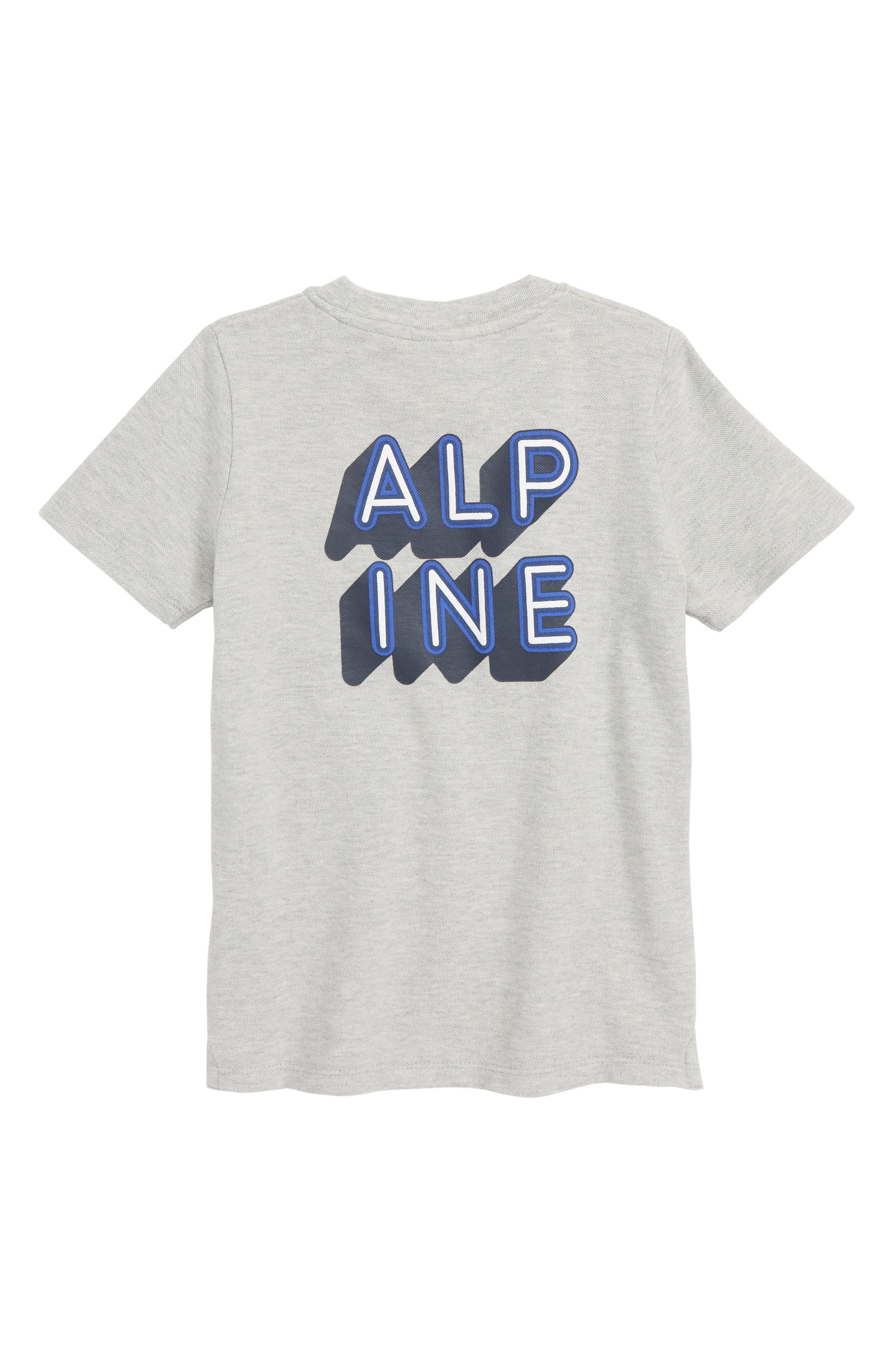 Alpine T-Shirt,                             Alternate thumbnail 2, color,                             GREY