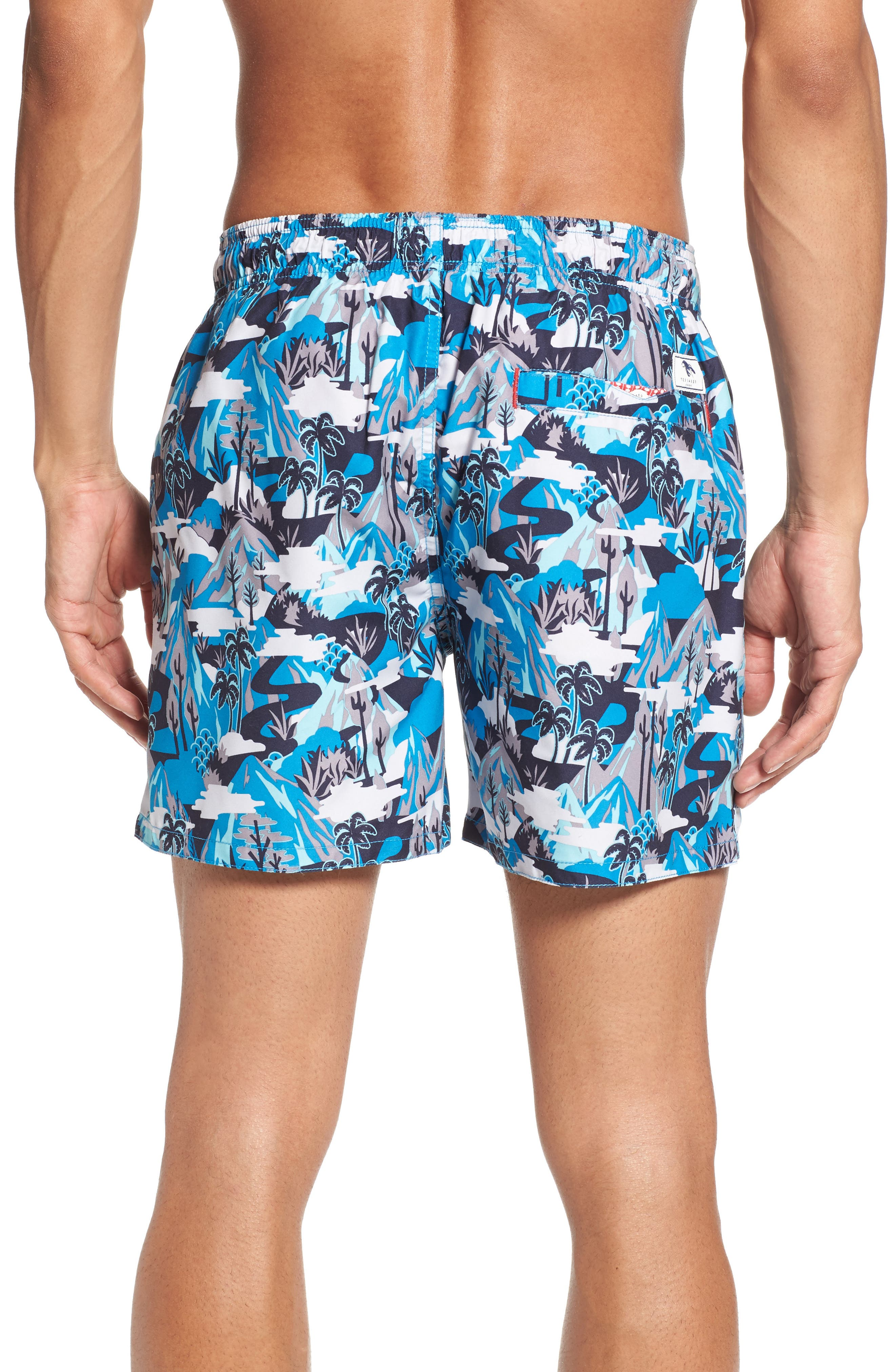 Karner Print Swim Trunks,                             Alternate thumbnail 2, color,                             421