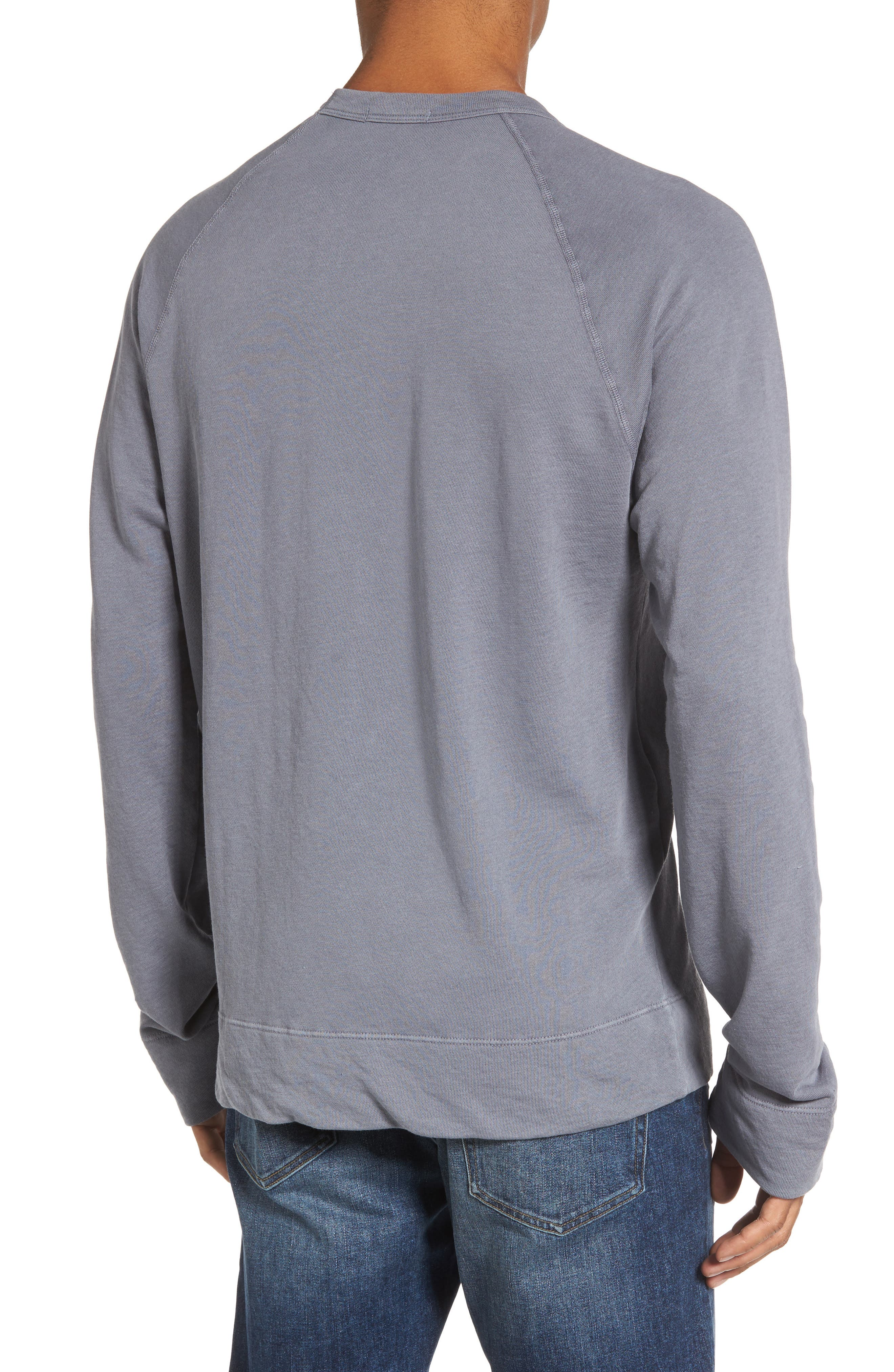 Raglan Crewneck Sweatshirt,                             Alternate thumbnail 2, color,                             029