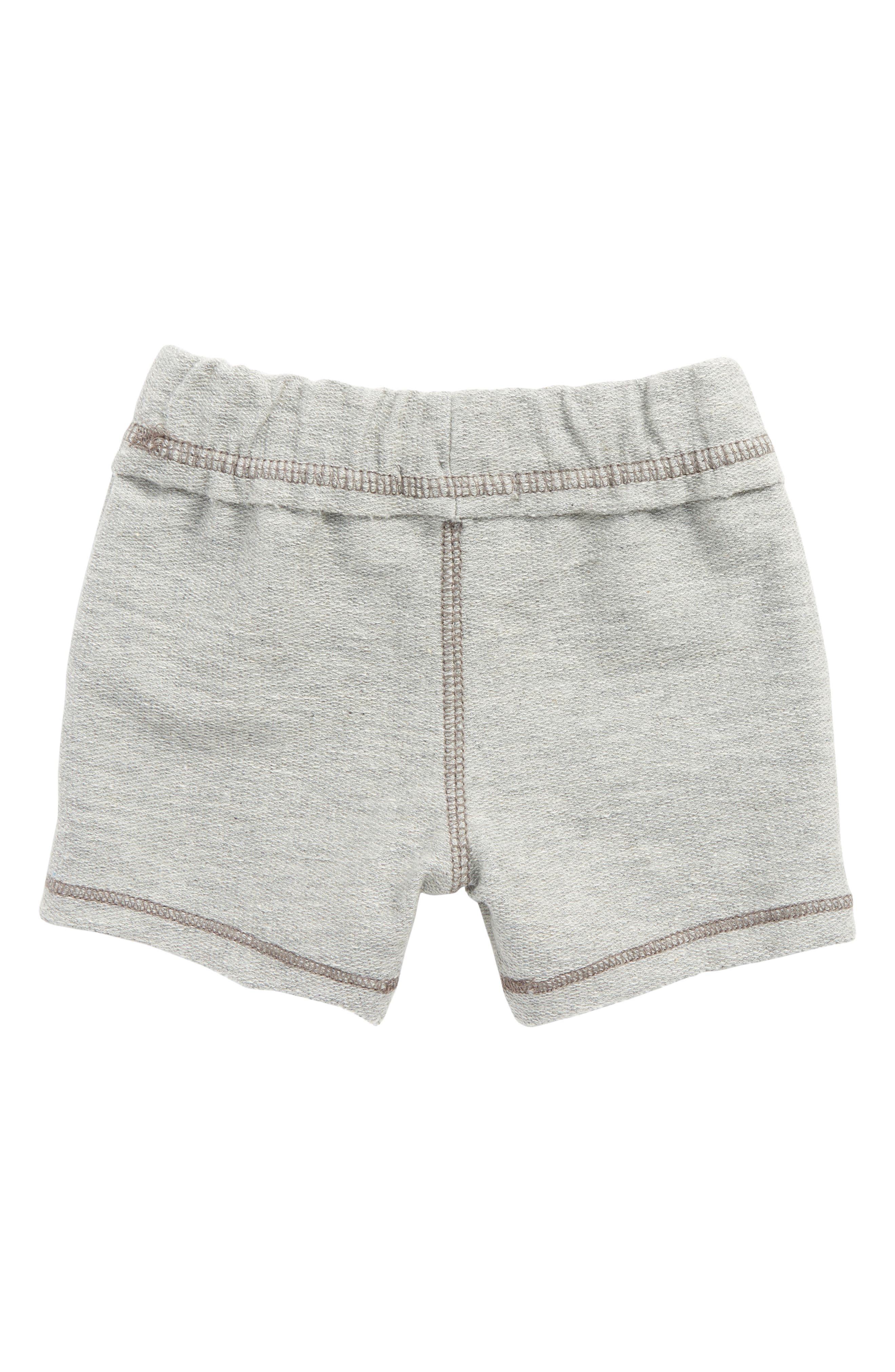 Organic Cotton French Terry Shorts,                             Alternate thumbnail 2, color,                             050