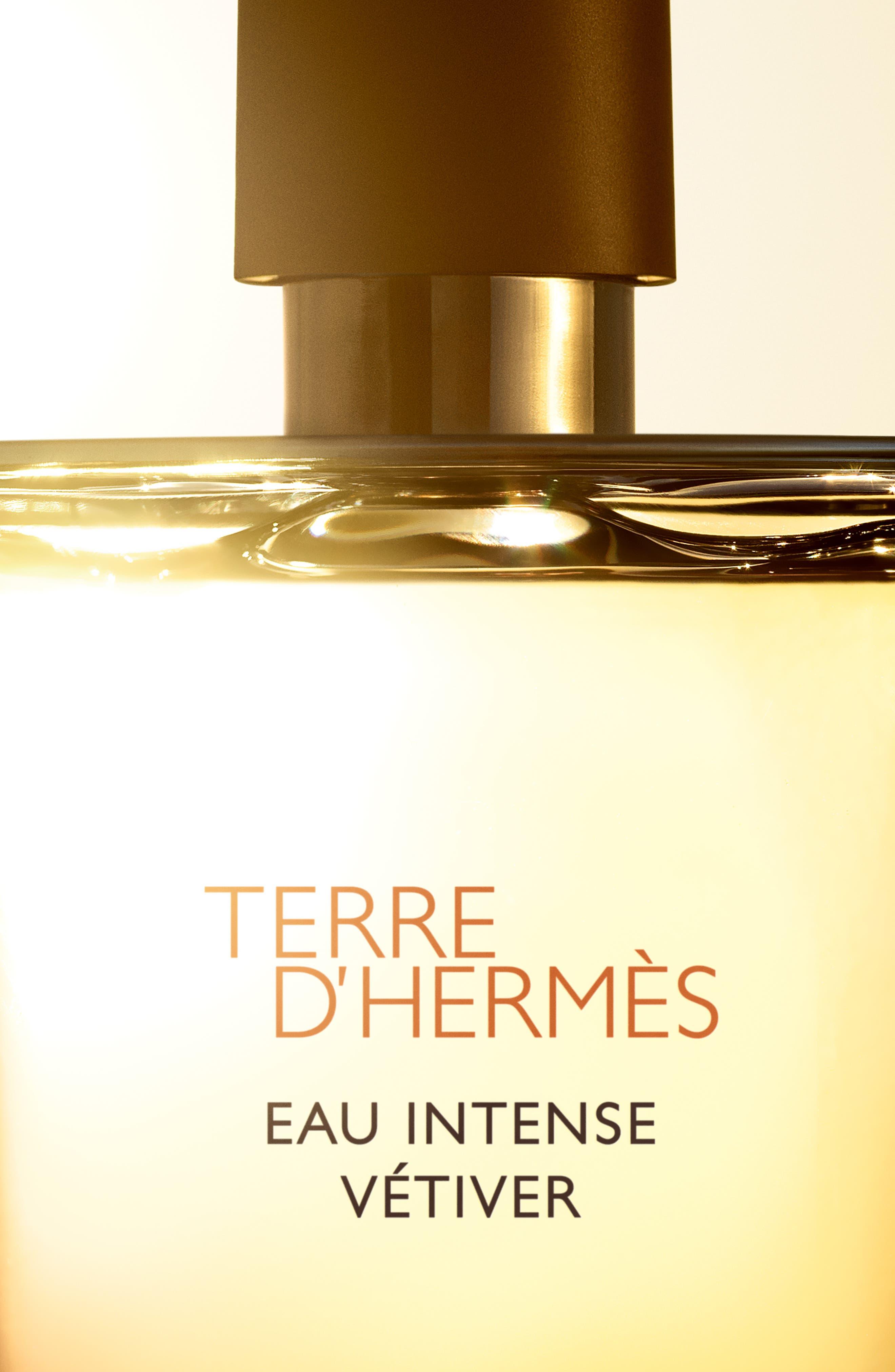 Terre d'Hermès Eau Intense Vétiver – Eau de parfum,                             Alternate thumbnail 2, color,                             NO COLOR