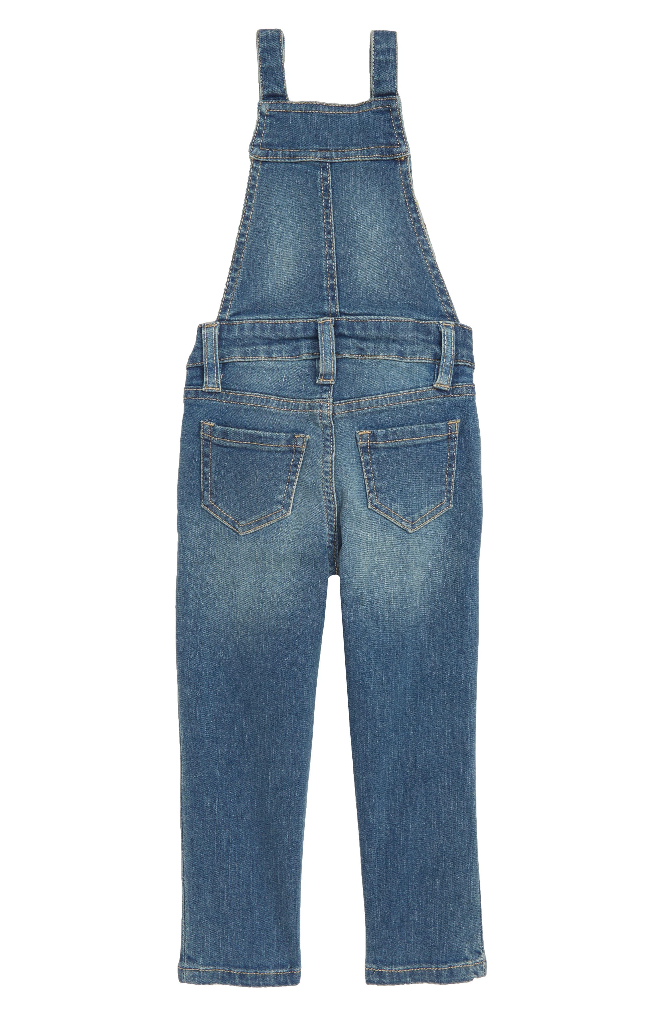 Taylor Embroidered Overalls,                             Alternate thumbnail 2, color,                             463