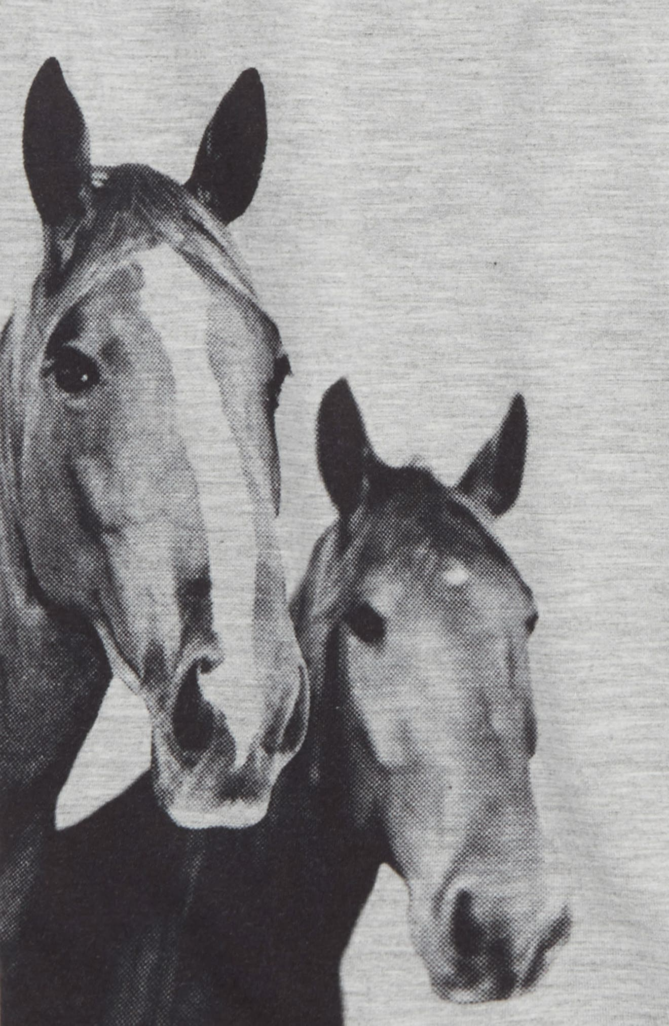 Rosey Horse Graphic Tee,                             Alternate thumbnail 2, color,