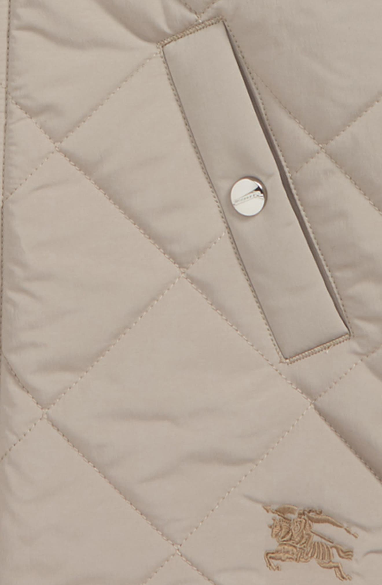 Mila Quilted Hooded Jacket,                             Alternate thumbnail 2, color,                             250