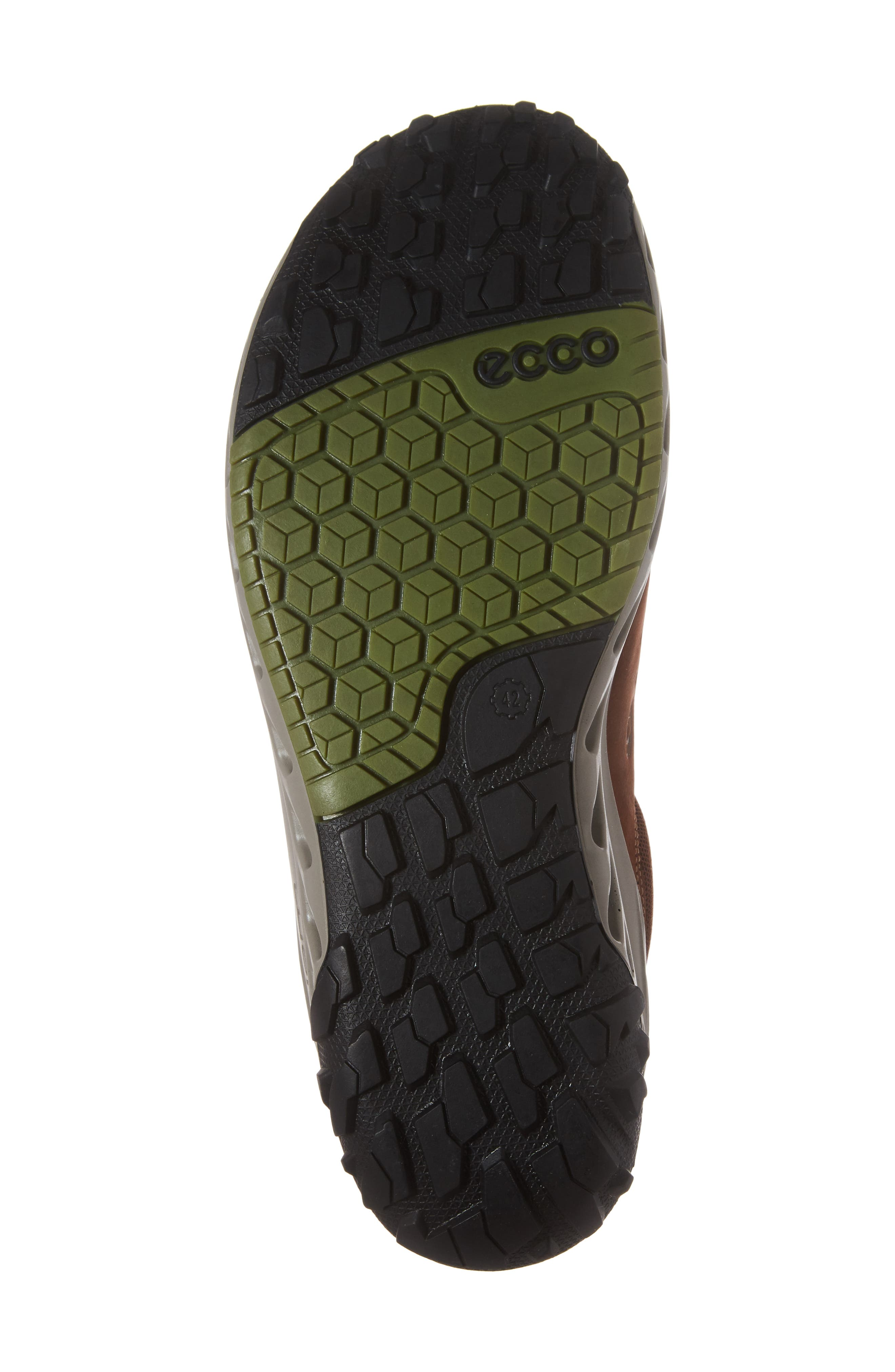 Biom Venture GTX Sneaker,                             Alternate thumbnail 18, color,