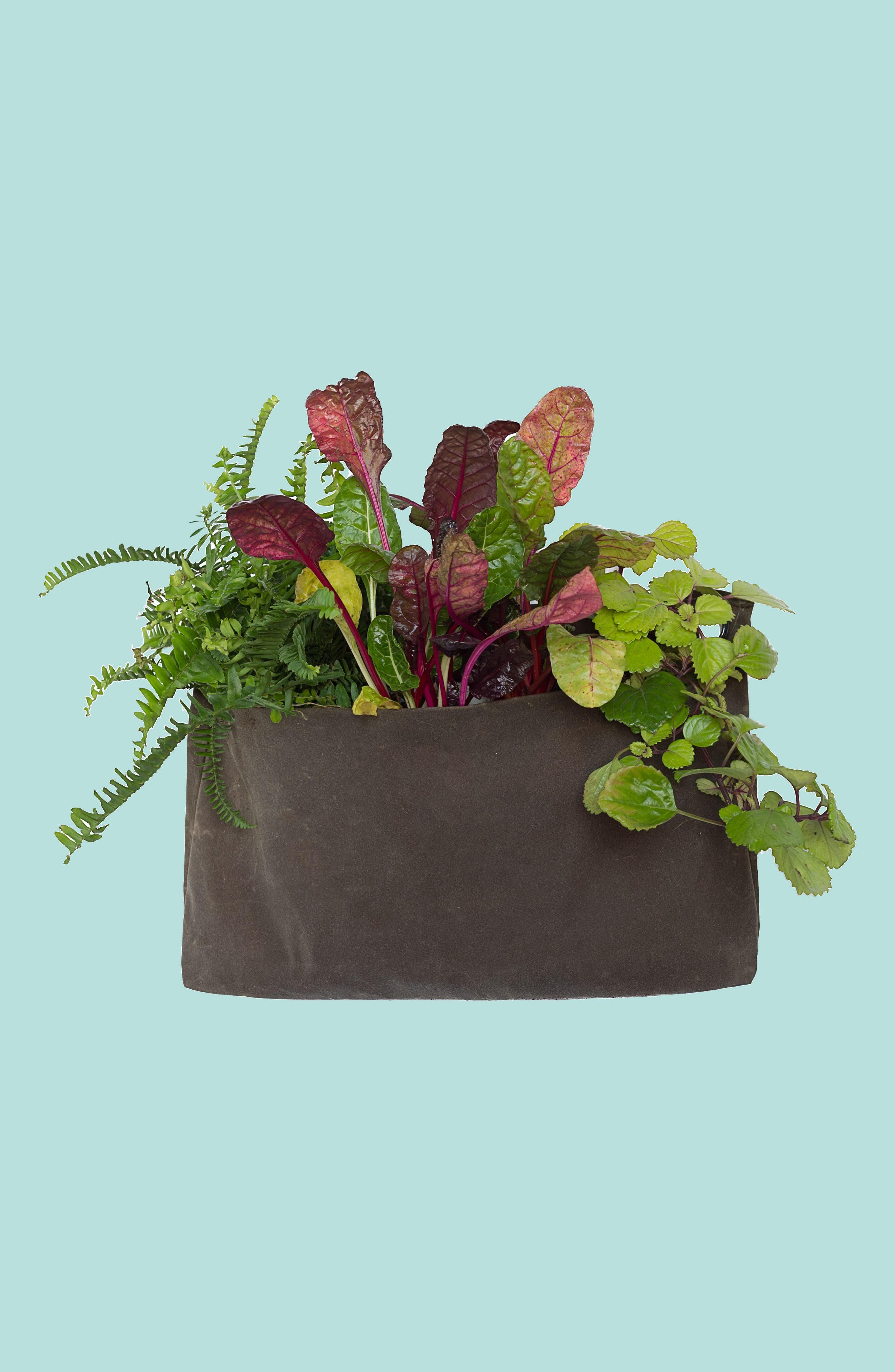 Large Waxed Canvas GrowPack Planter,                             Main thumbnail 1, color,                             200