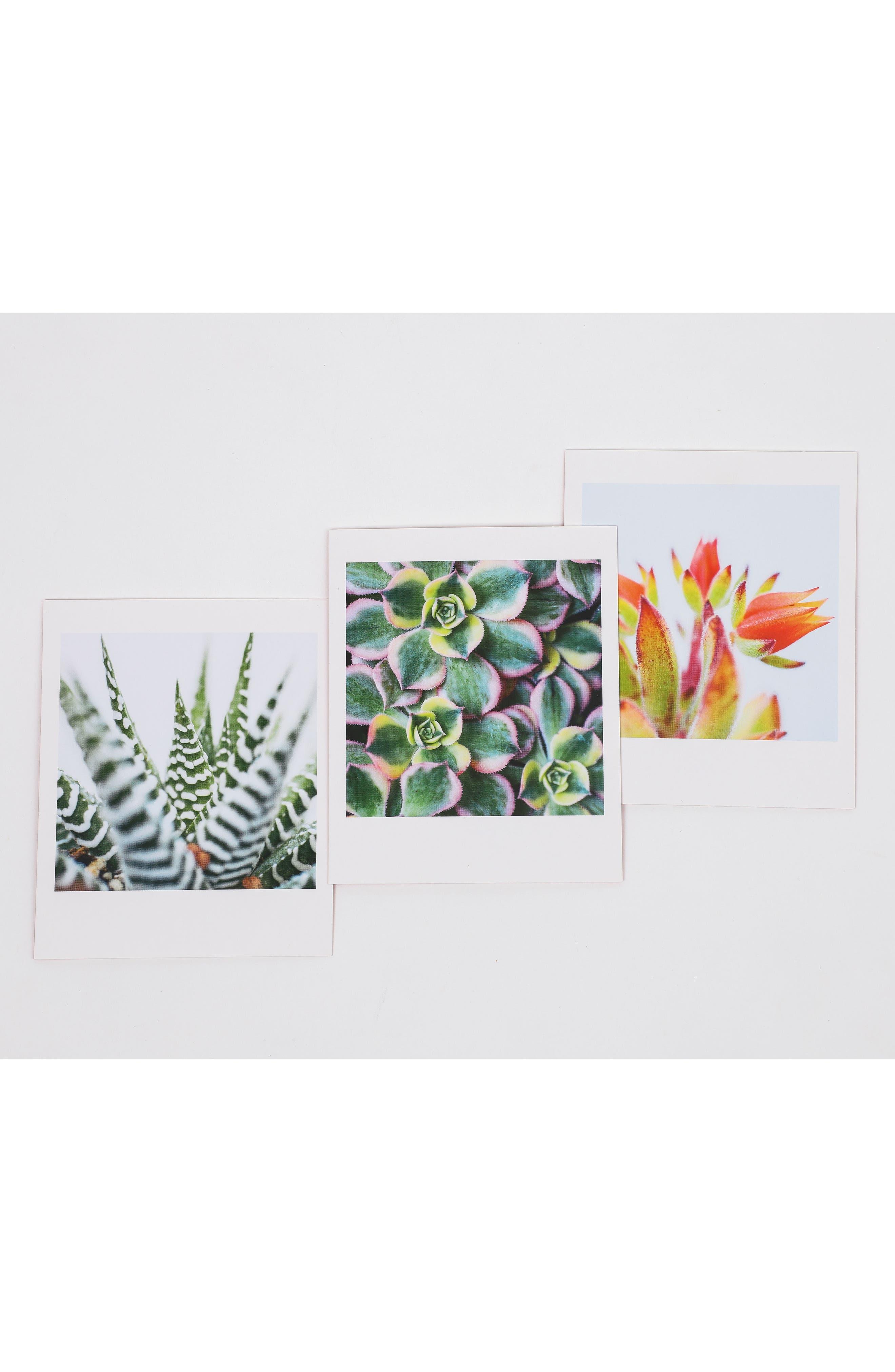 Set of 20 Succulent Notecards,                             Alternate thumbnail 4, color,                             300