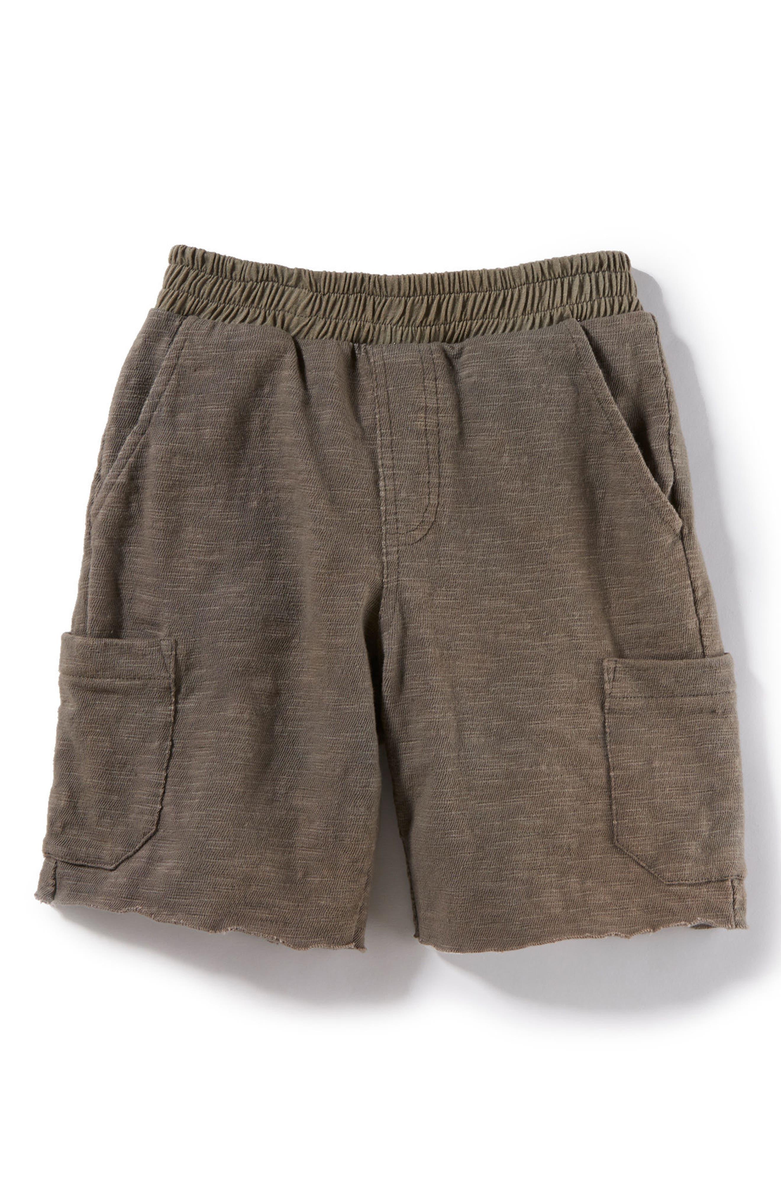 Asher Knit Shorts,                         Main,                         color, 305