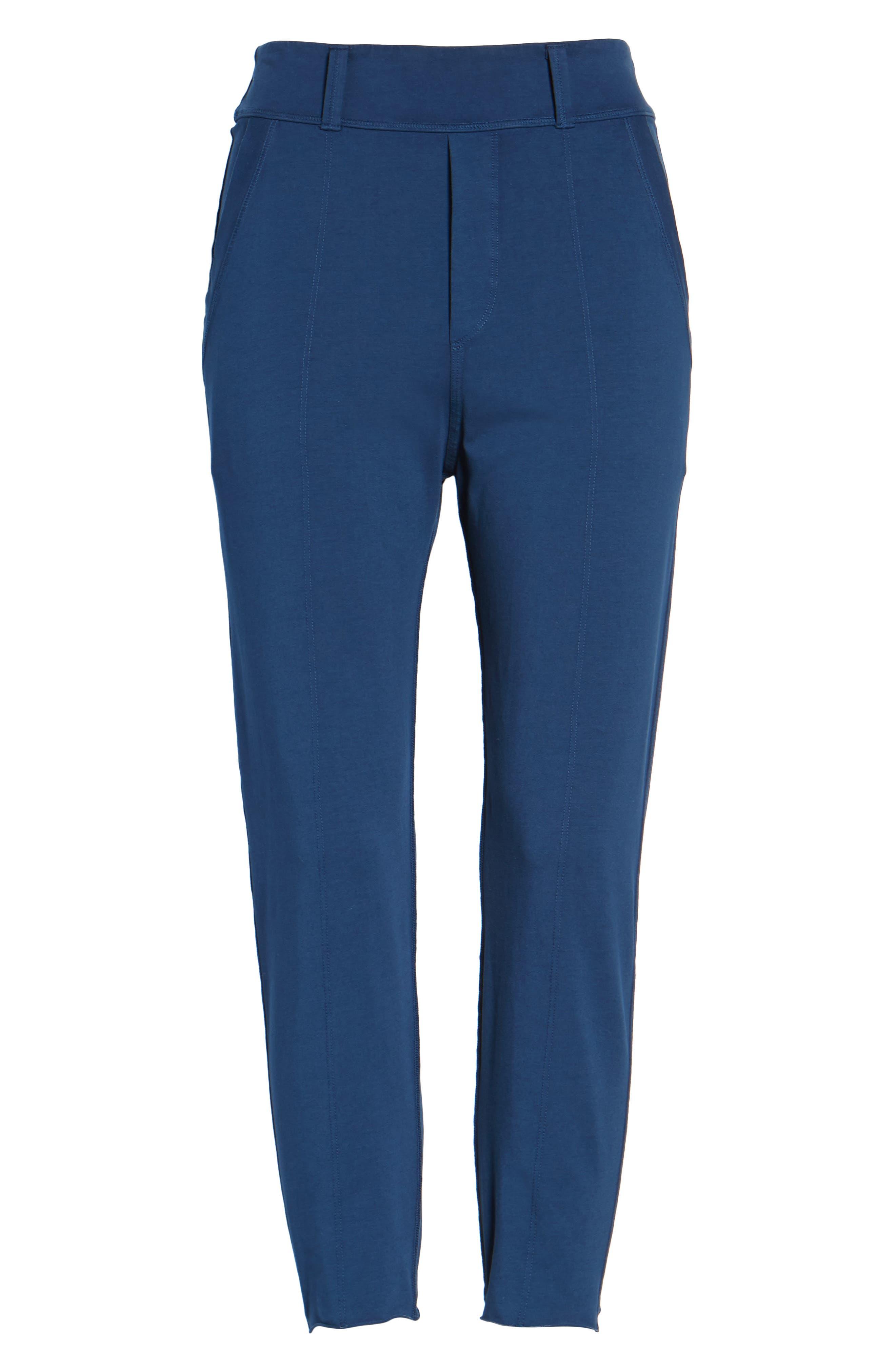 The Trouser Knit Pants,                             Alternate thumbnail 6, color,                             470