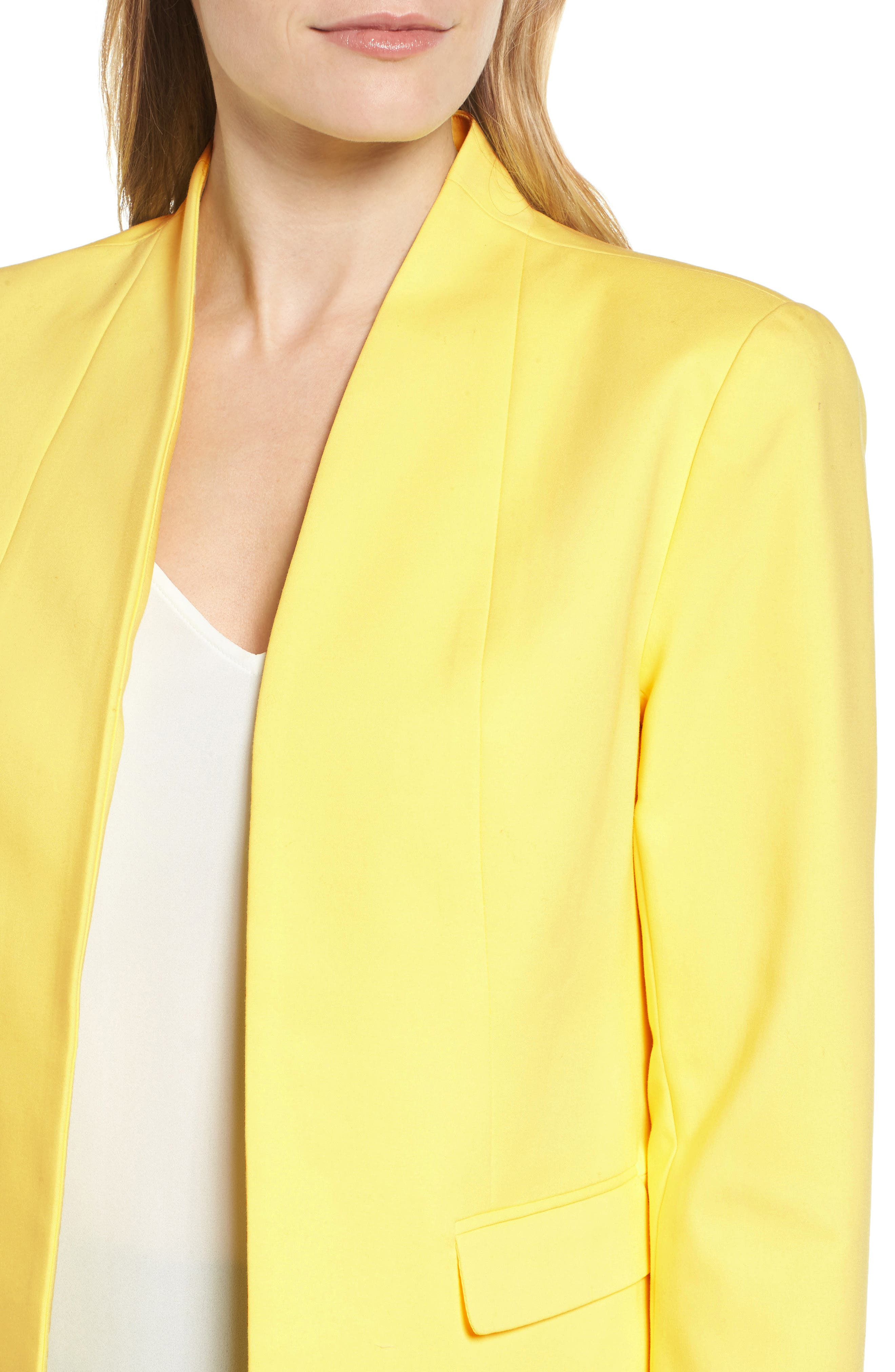 Stand Collar Jacket,                             Alternate thumbnail 4, color,                             784