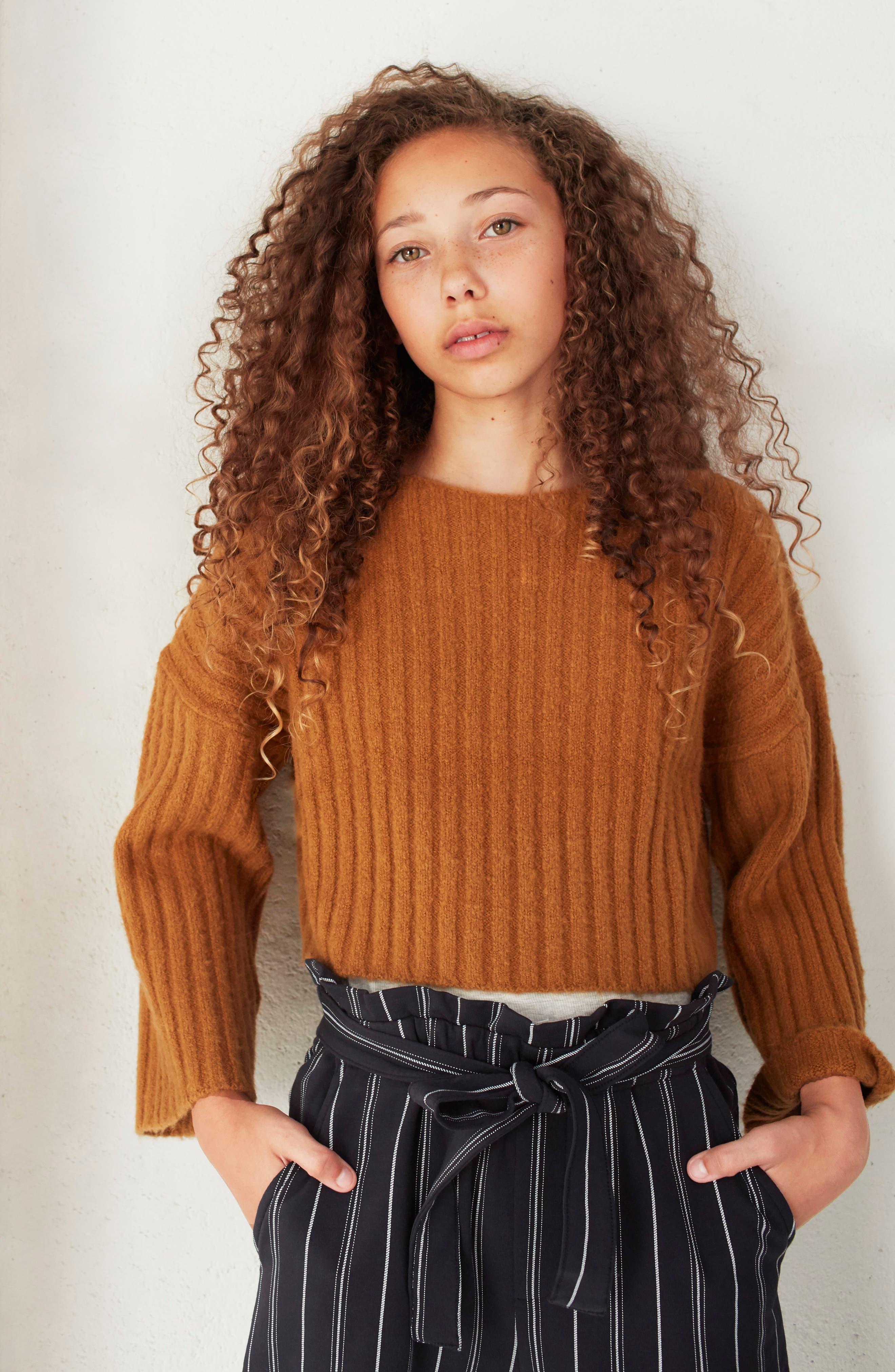 Crop Sweater,                             Alternate thumbnail 3, color,                             BROWN DIJON