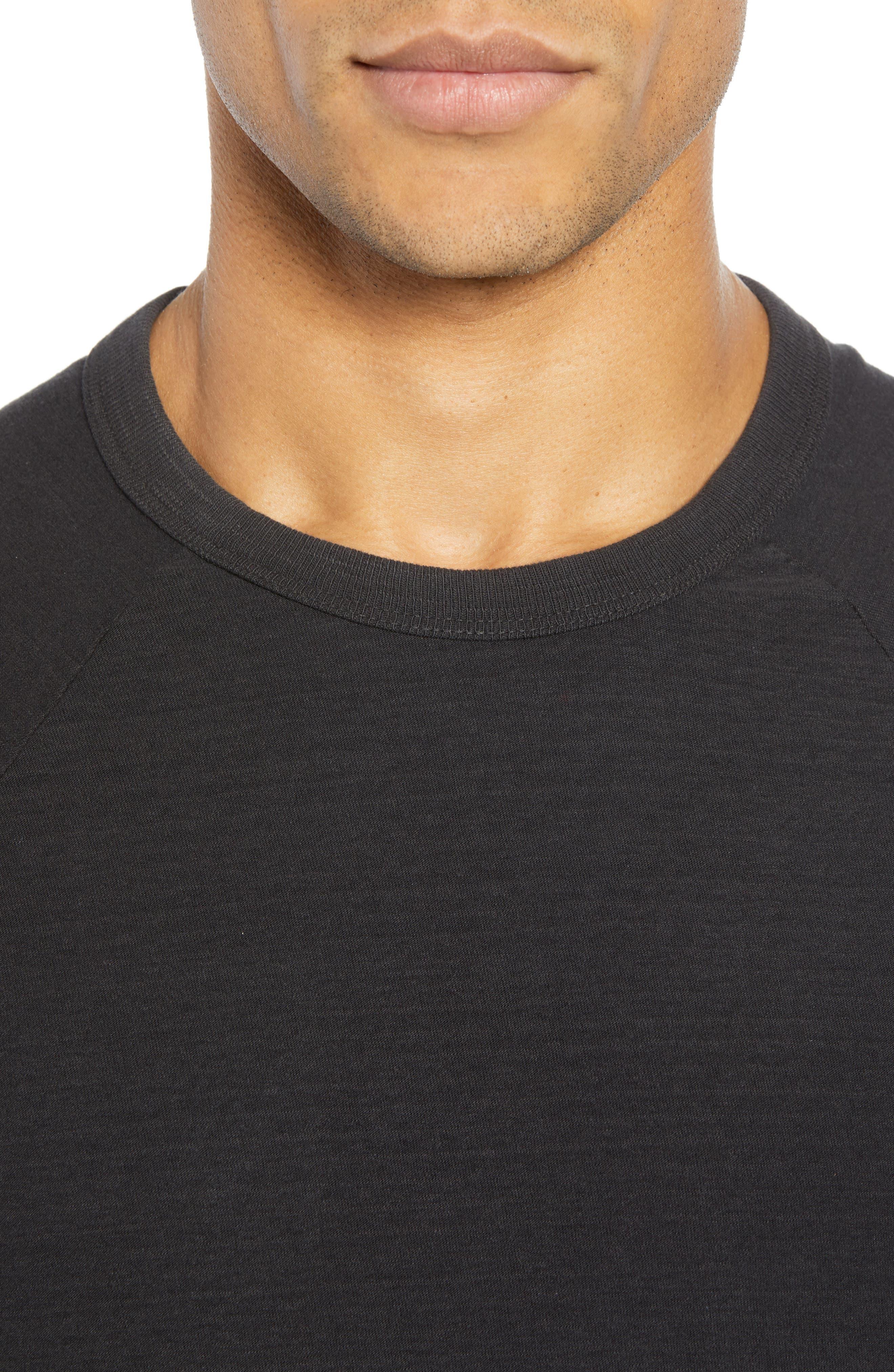 Microstripe Long Sleeve Raglan T-Shirt,                             Alternate thumbnail 4, color,                             CARBON
