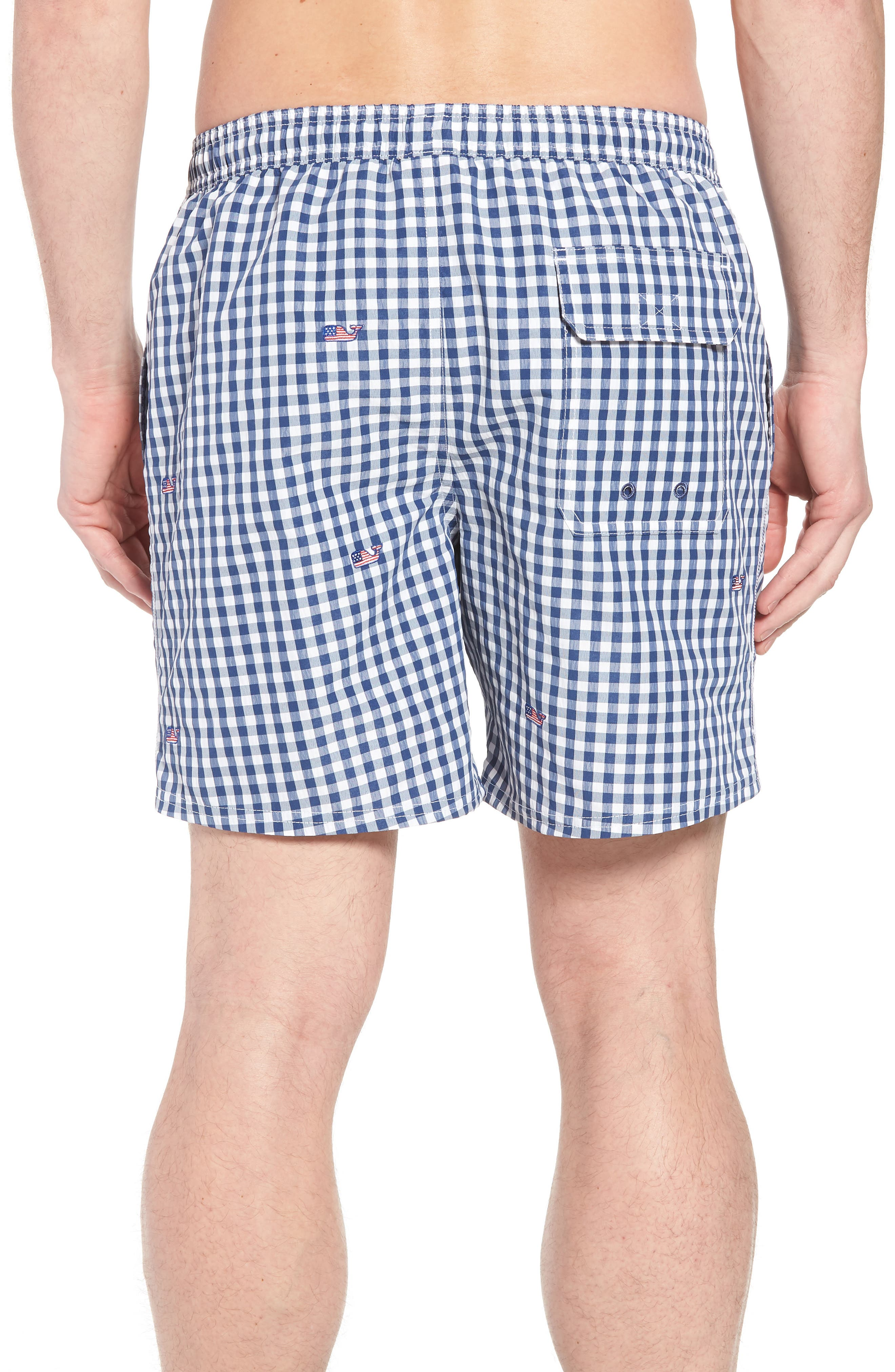 Chappy Flag Whale Embroidered Gingham Swim Trunks,                             Alternate thumbnail 2, color,                             461