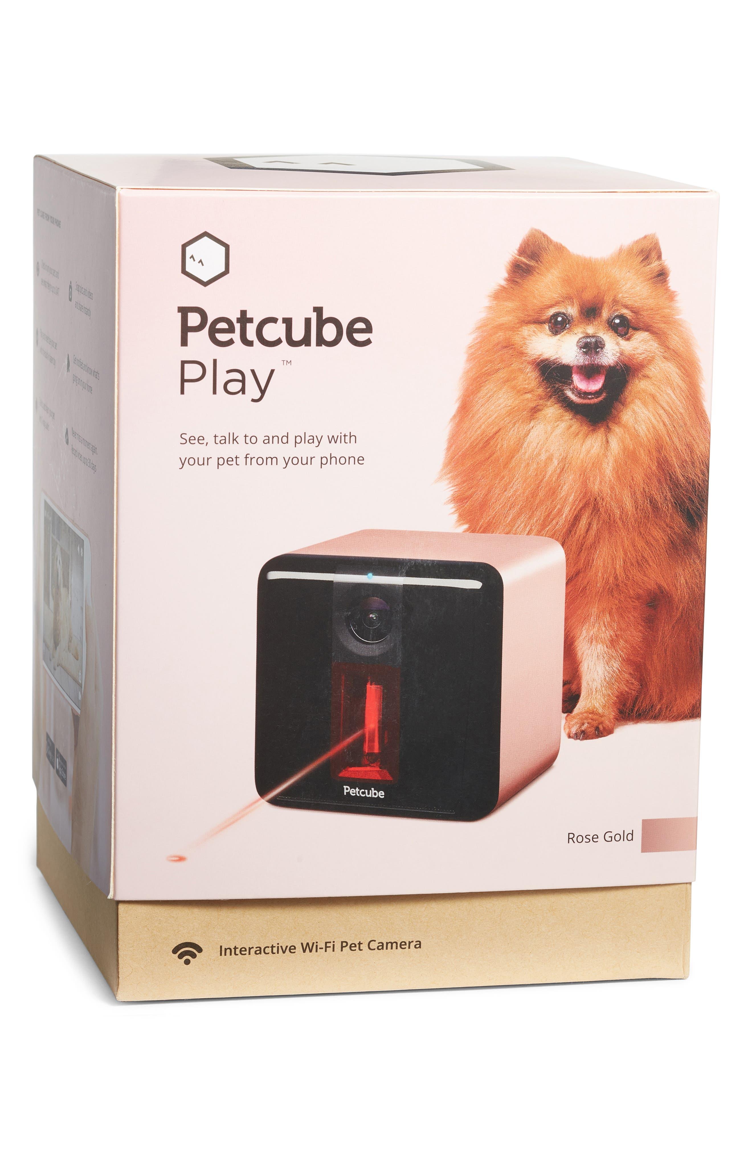 Play Interactive Wi-Fi Pet Camera,                             Alternate thumbnail 9, color,