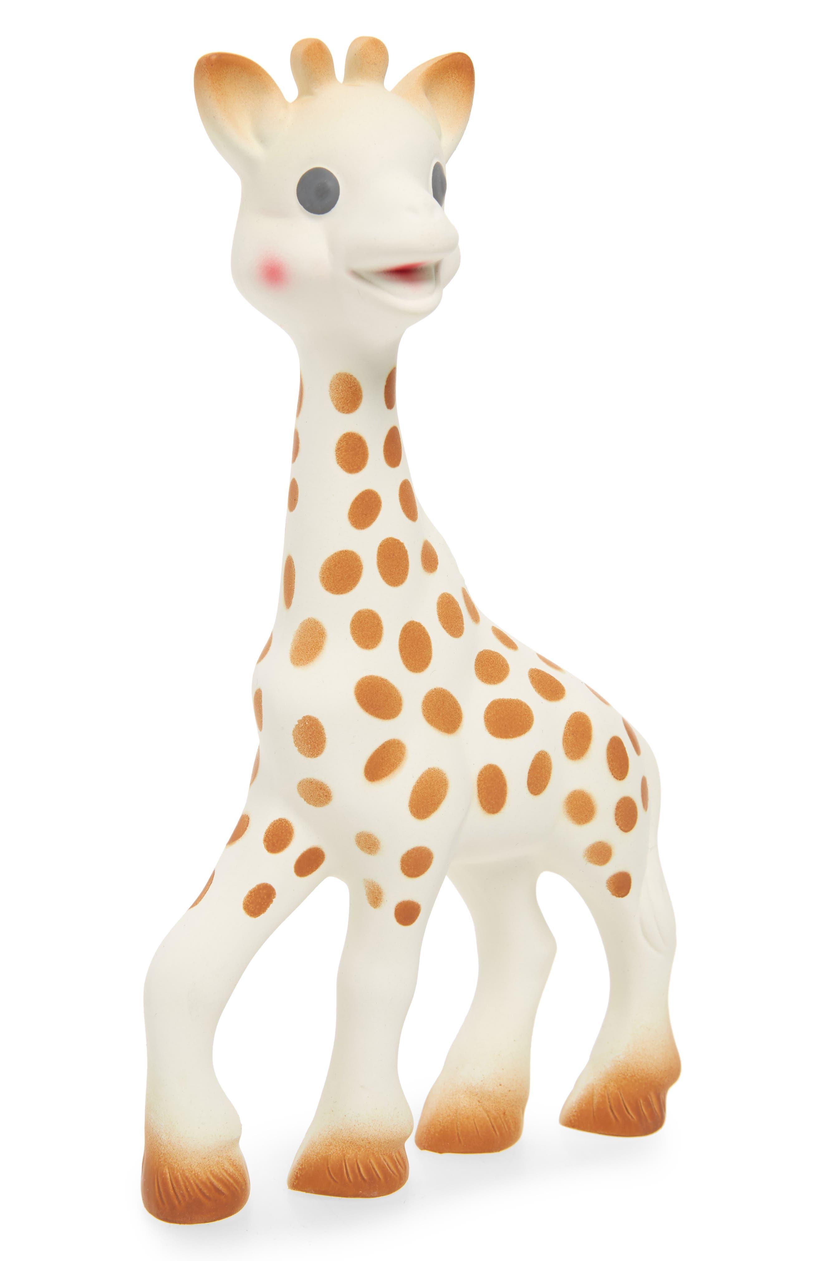 Teether Sensory Development Toy, Main, color, 900