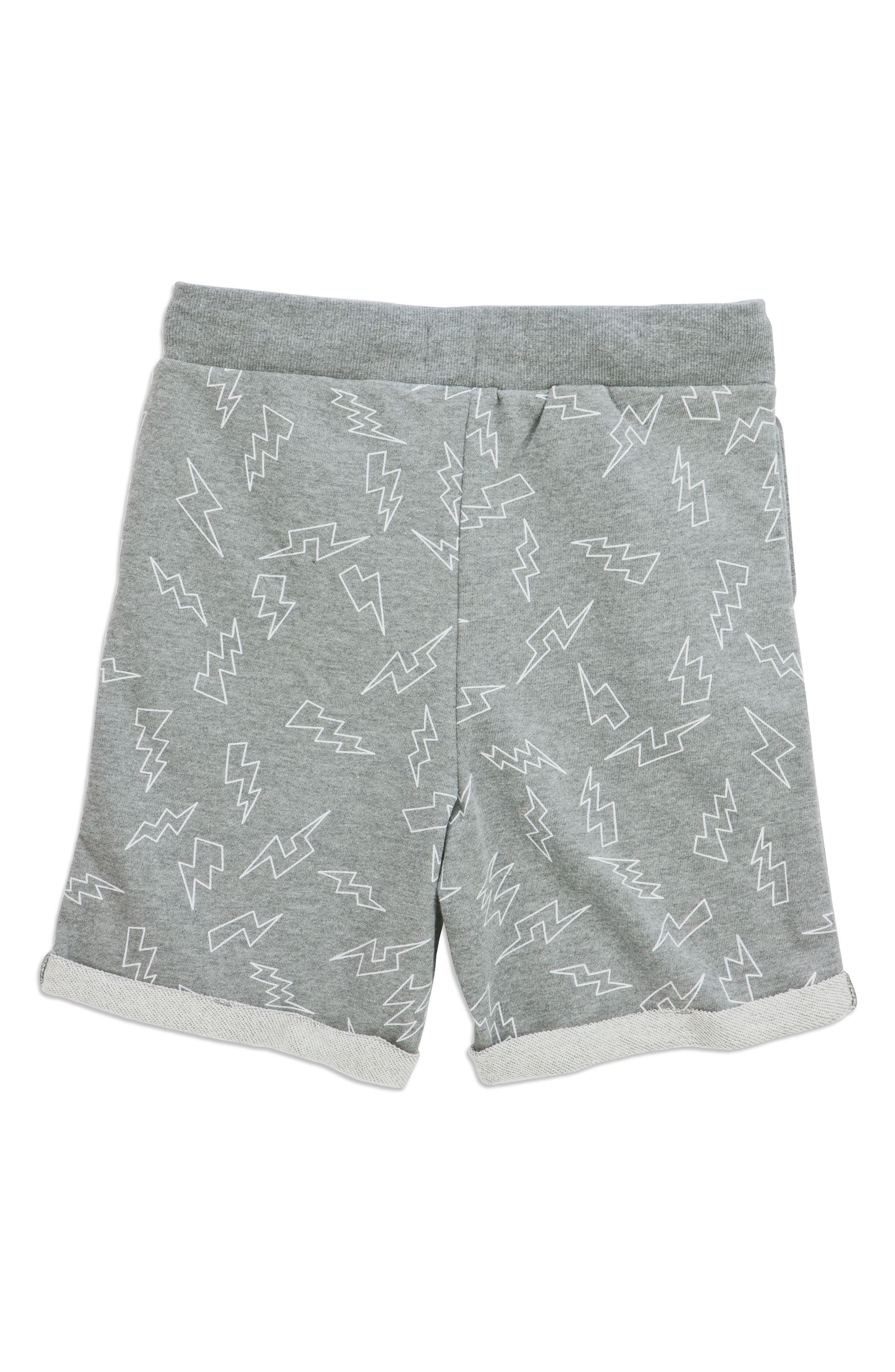 Electric Adriel Knit Shorts,                             Alternate thumbnail 2, color,                             020