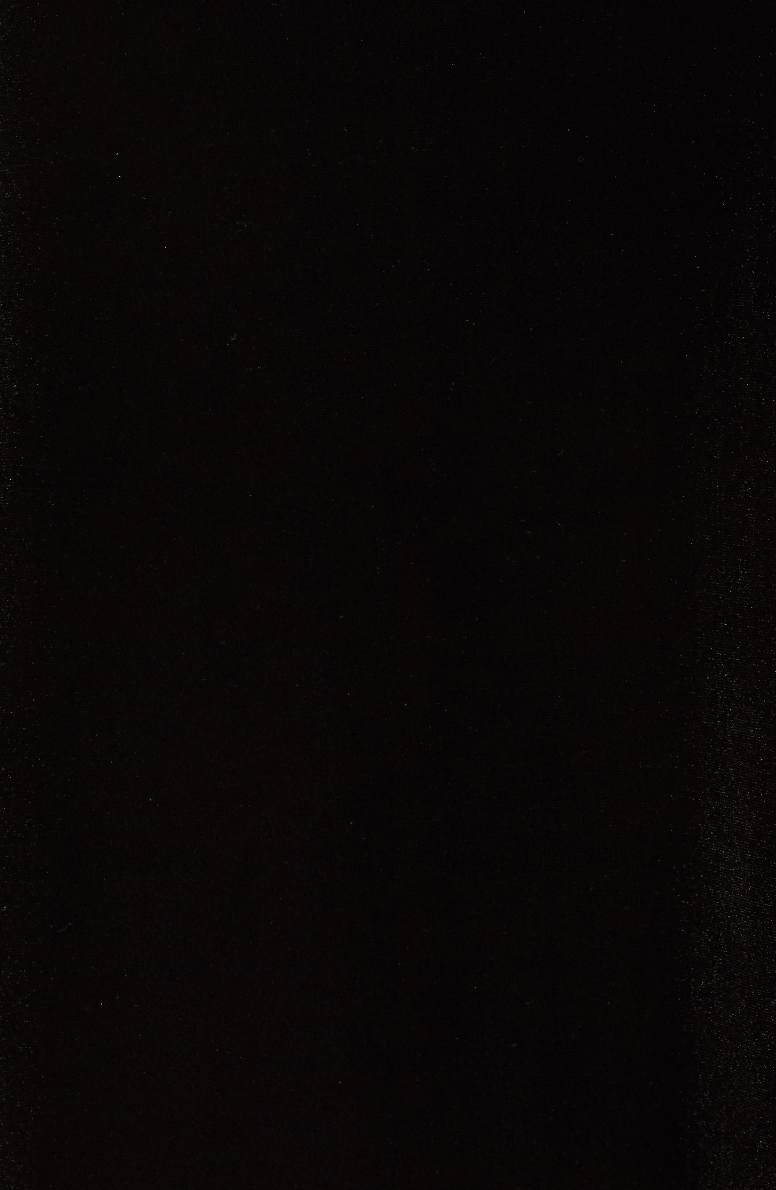 Sequin & Velvet High/Low Tunic,                             Alternate thumbnail 5, color,                             220
