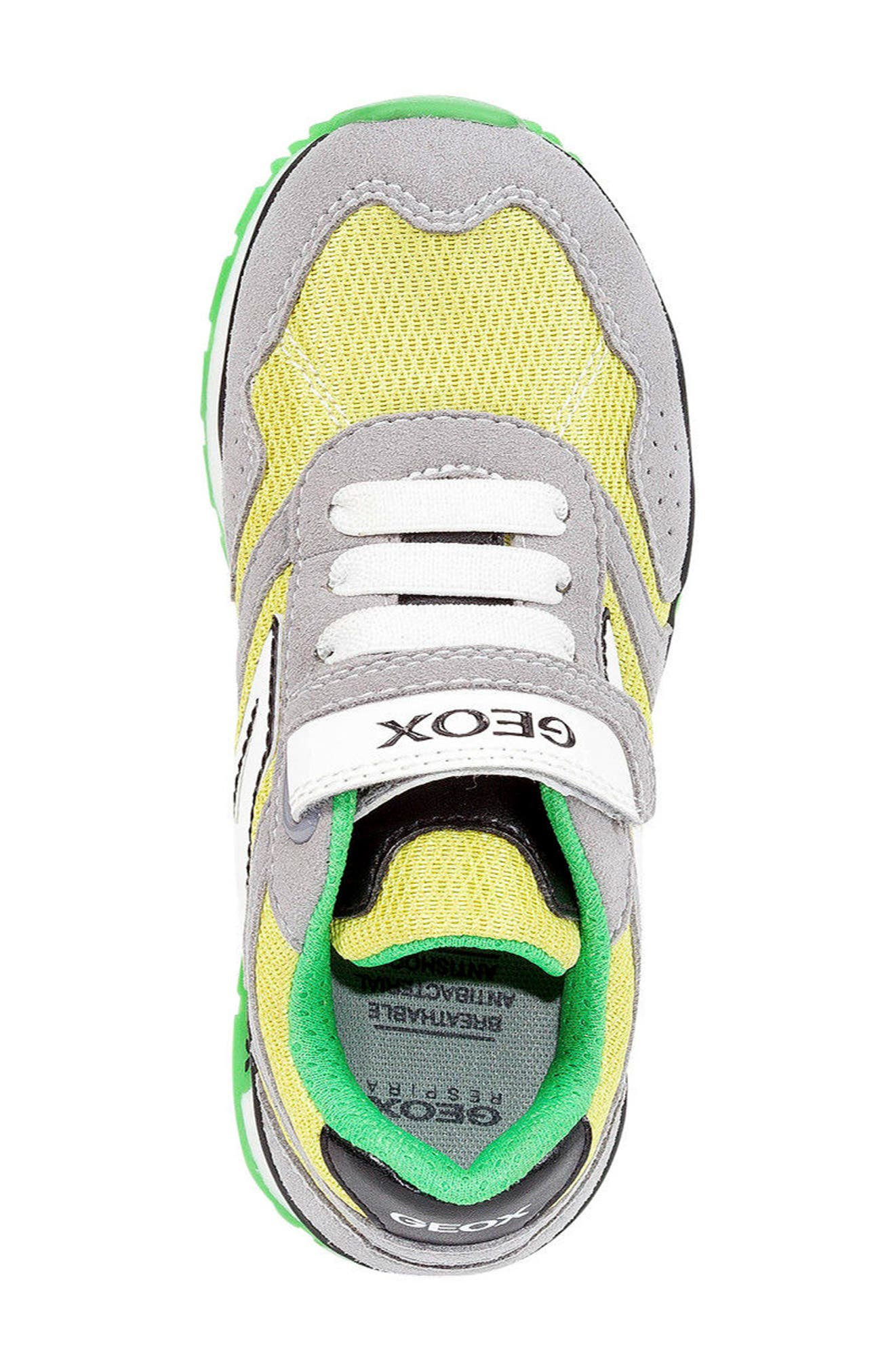 Pavel Low Top Sneaker,                             Alternate thumbnail 5, color,                             GREY/ LIME