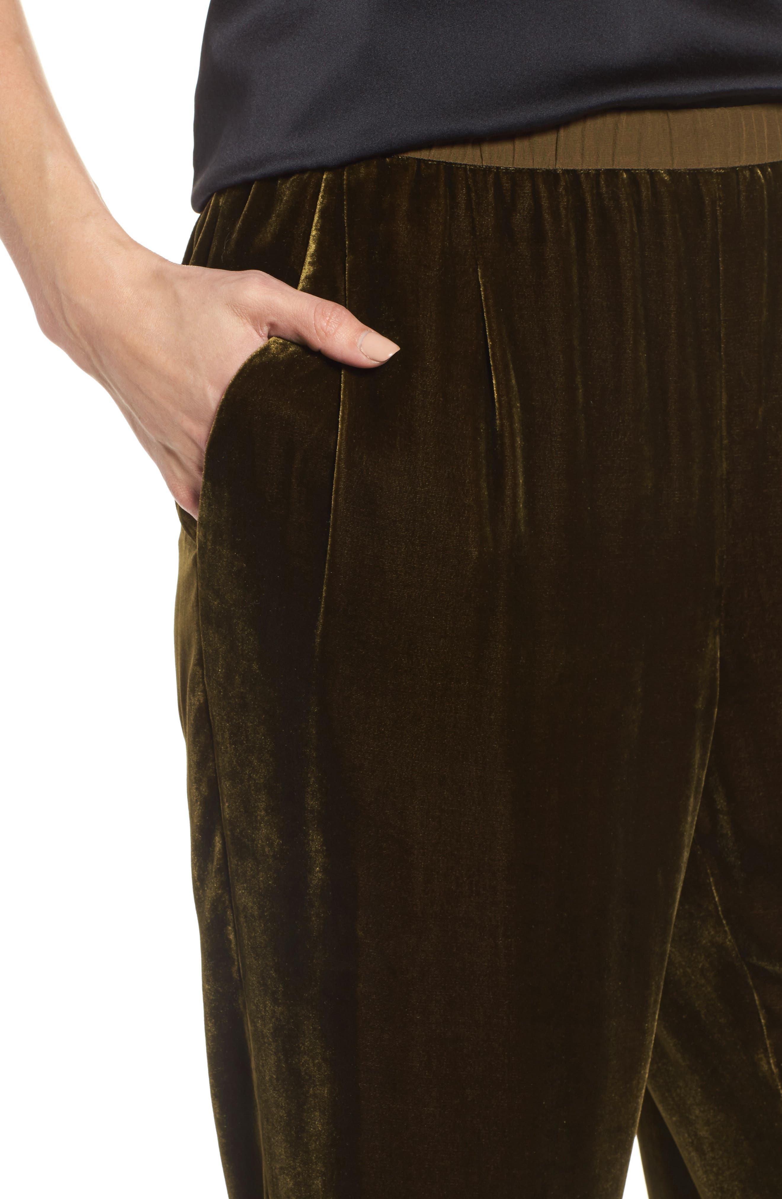 Velvet Ankle Pants,                             Alternate thumbnail 4, color,                             342
