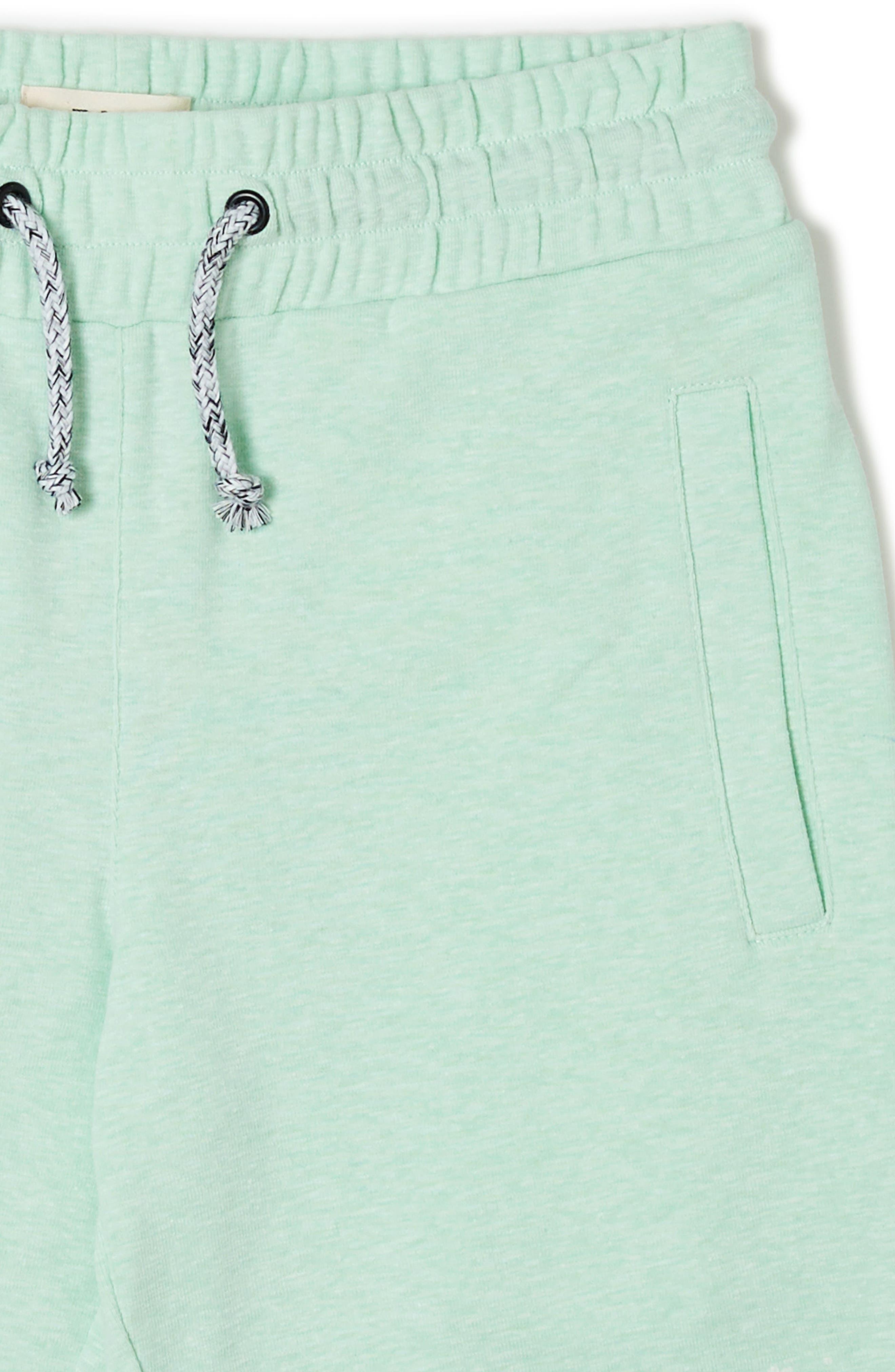 Ranger Knit Shorts,                             Alternate thumbnail 3, color,                             GREEN