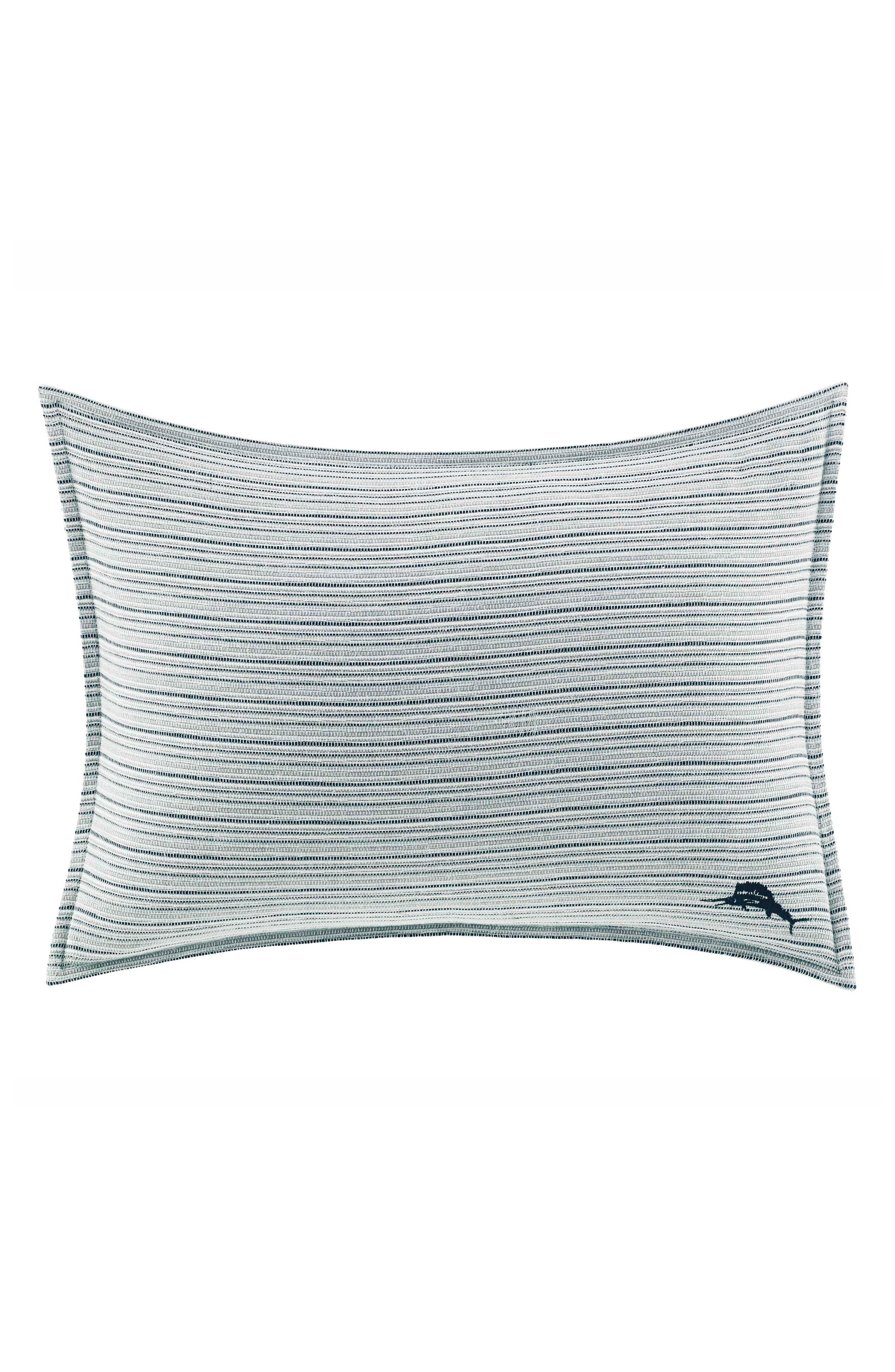 Raw Coast Pillow,                         Main,                         color, BLUE