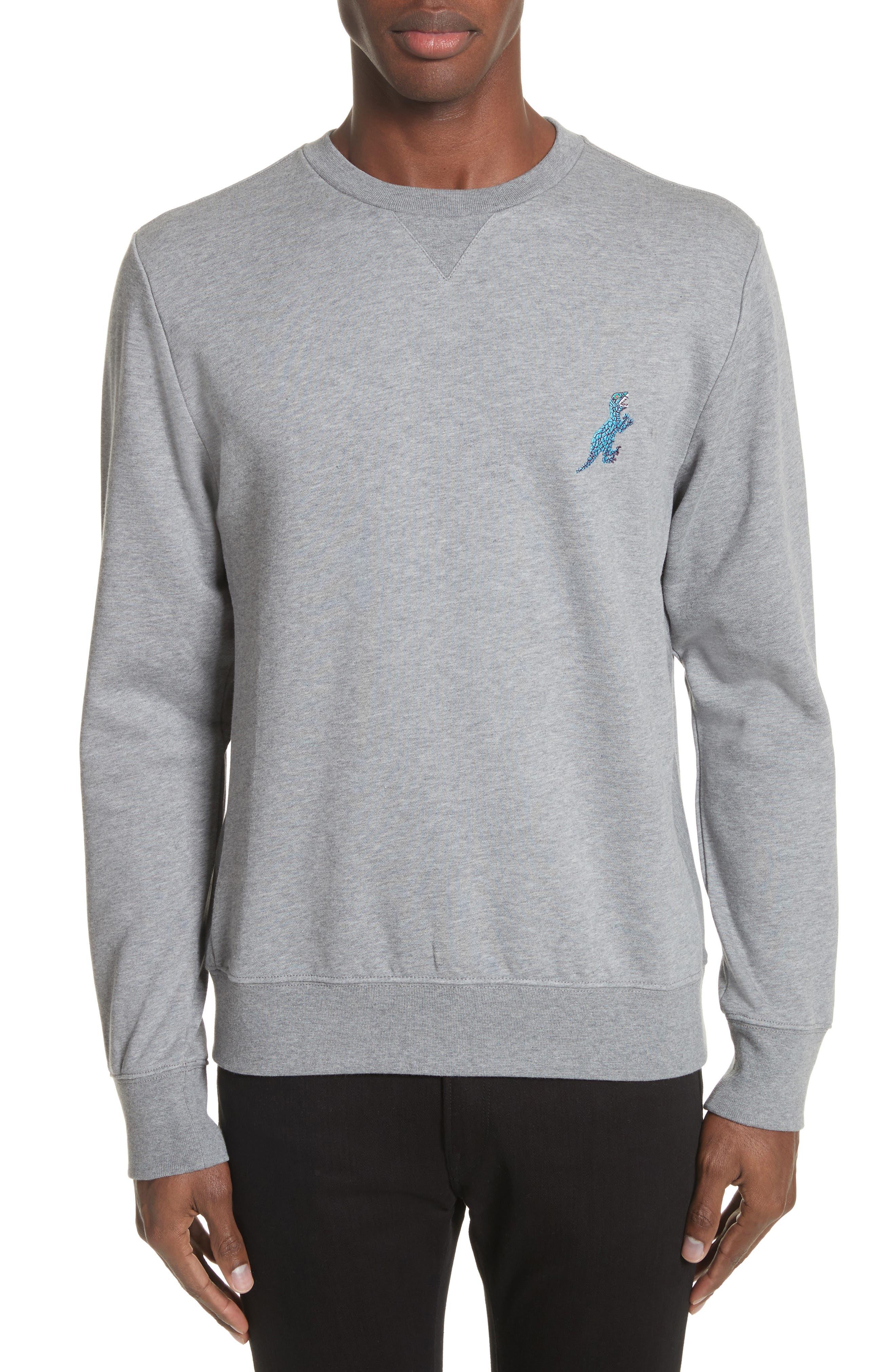 Dino Embroidered Crewneck Sweatshirt,                         Main,                         color,
