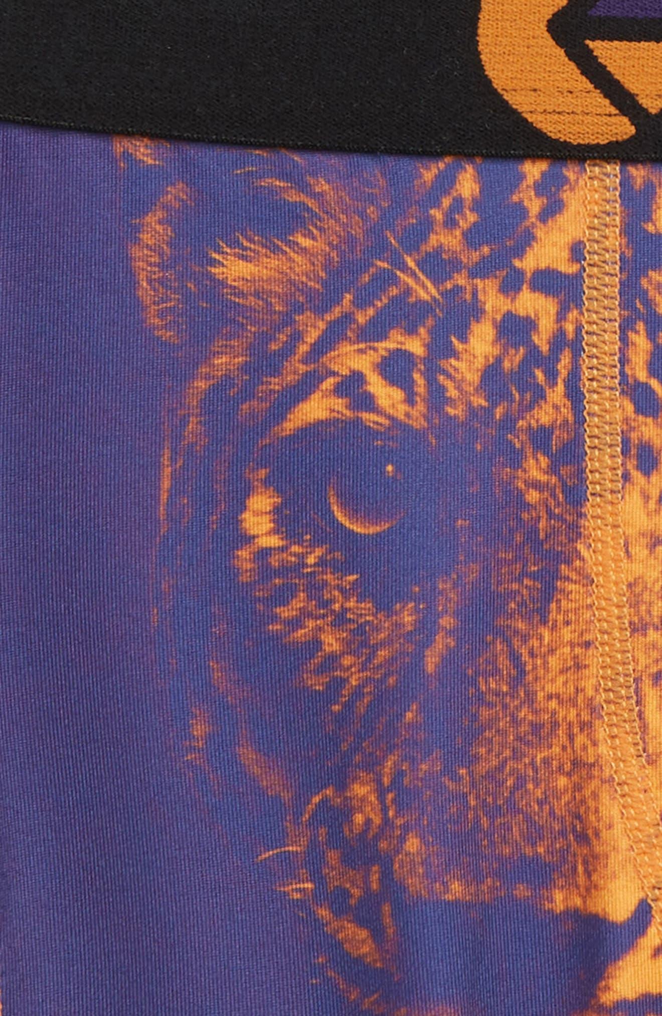 Bronze Leopard Boxer Briefs,                             Alternate thumbnail 3, color,                             800