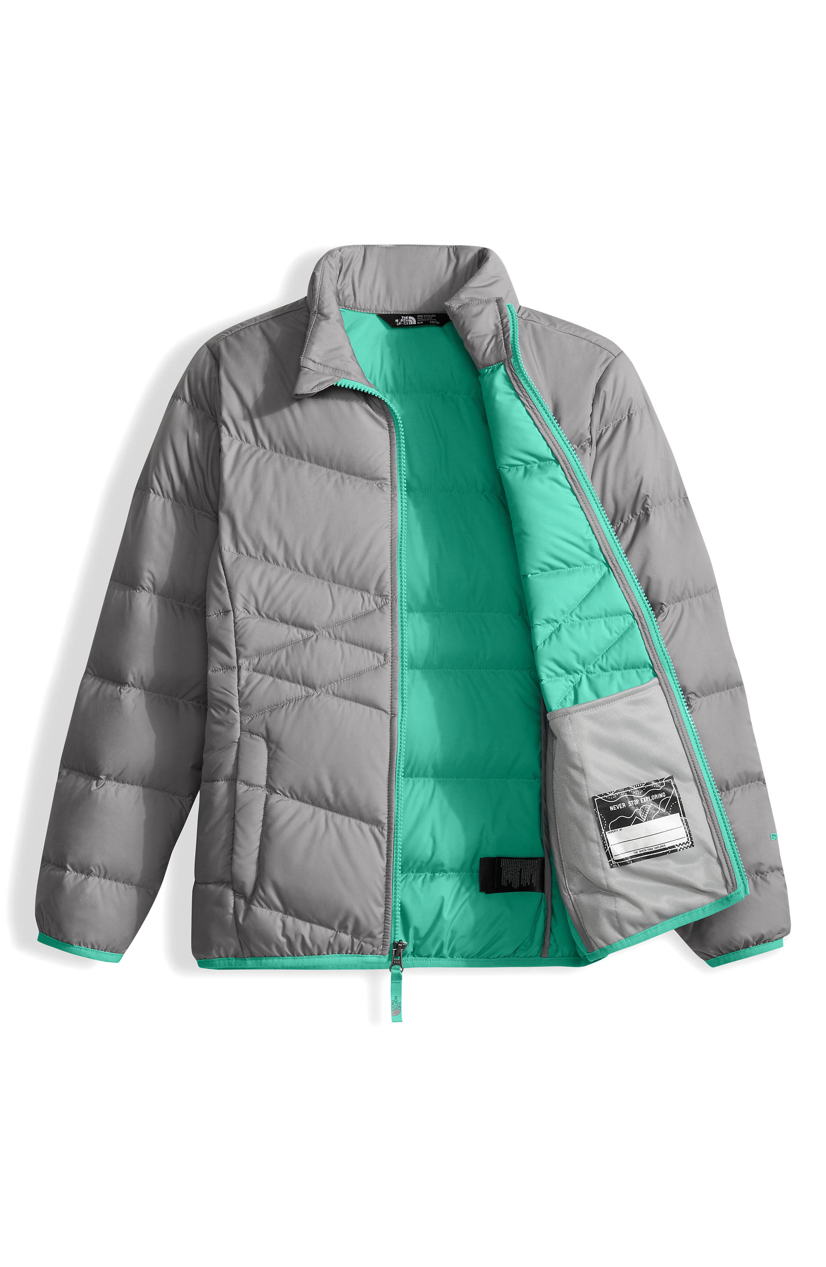 Andes Water Repellent Down Jacket,                             Alternate thumbnail 2, color,                             041