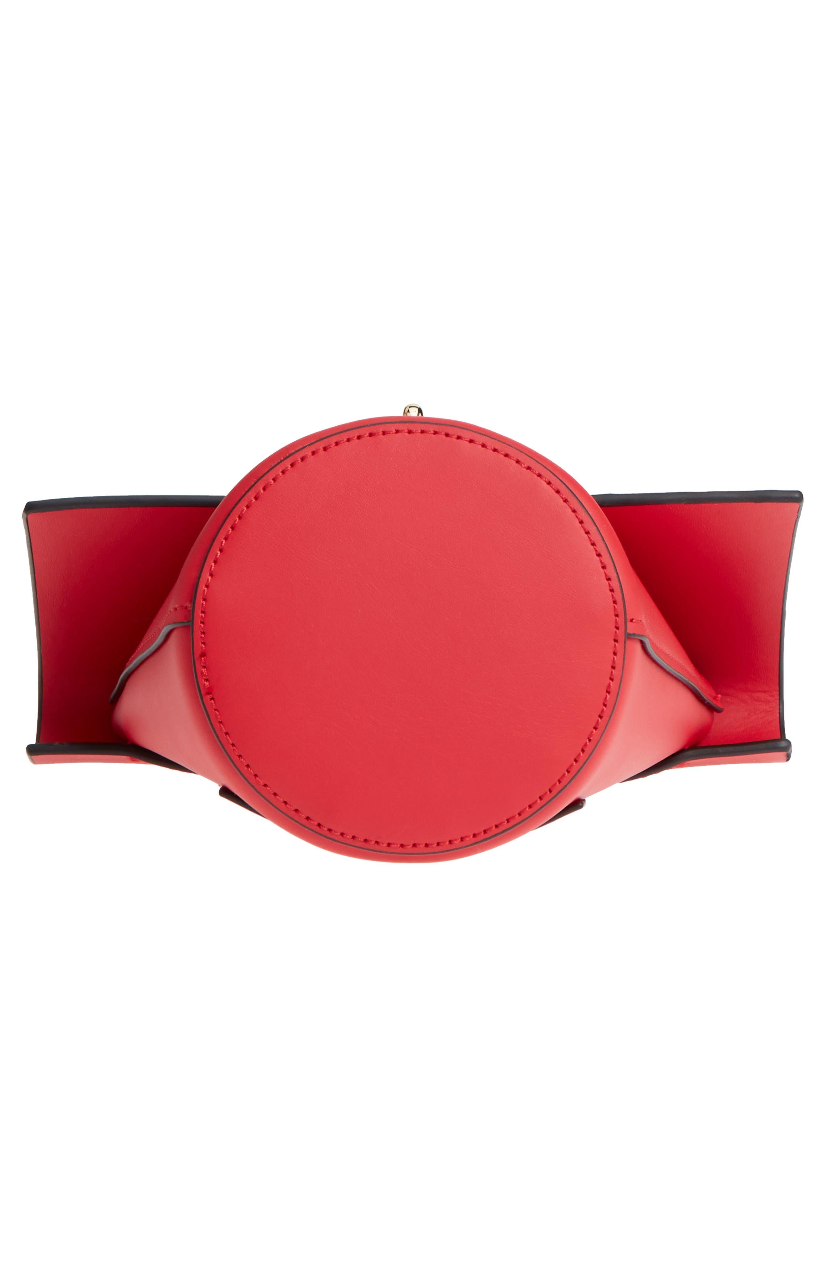 Belay Chain Calfskin Leather Crossbody Bag,                             Alternate thumbnail 20, color,