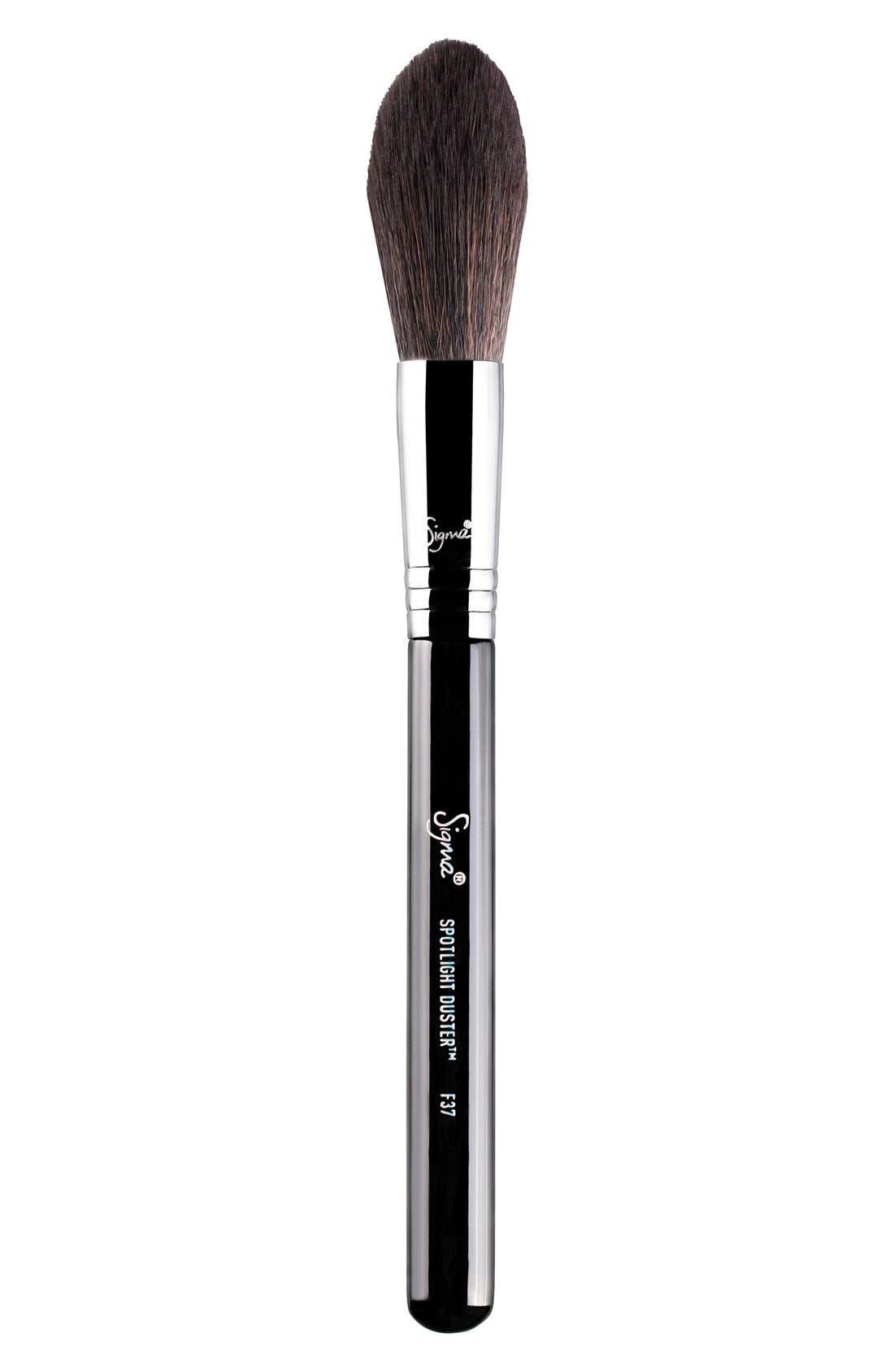 F37 Spotlight Duster<sup>™</sup> Brush,                             Main thumbnail 1, color,                             NO COLOR