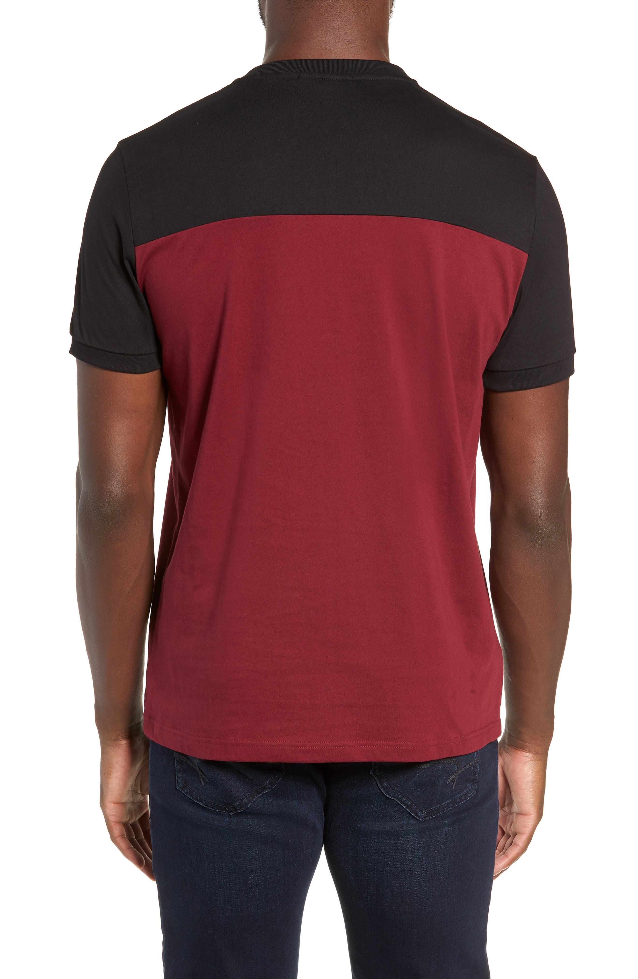 Embroidered Colorblock T-Shirt,                             Alternate thumbnail 2, color,                             TAWNY PORT