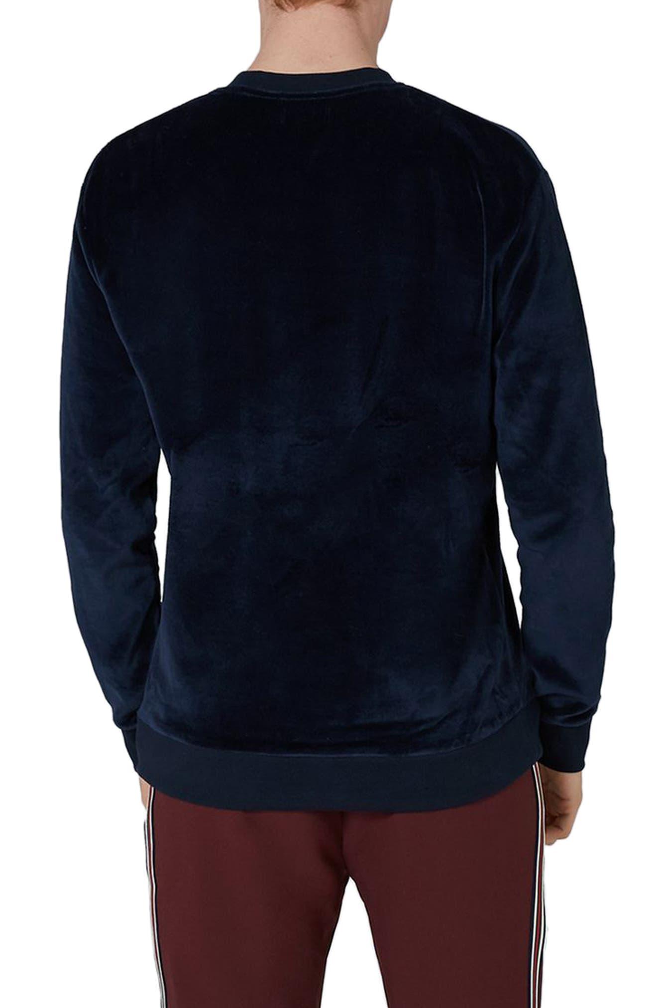 Velour Sweatshirt,                             Alternate thumbnail 2, color,                             401
