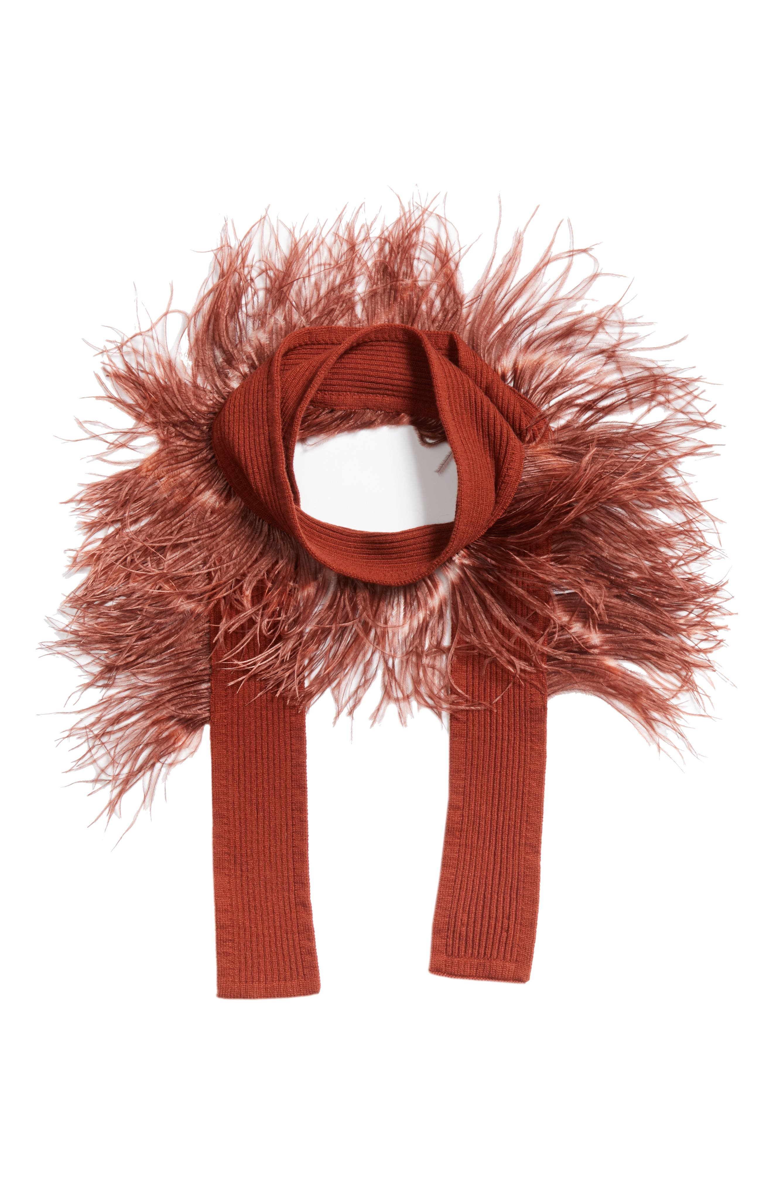 Ostrich Feather Trim Cashmere Scarf,                             Alternate thumbnail 3, color,                             220