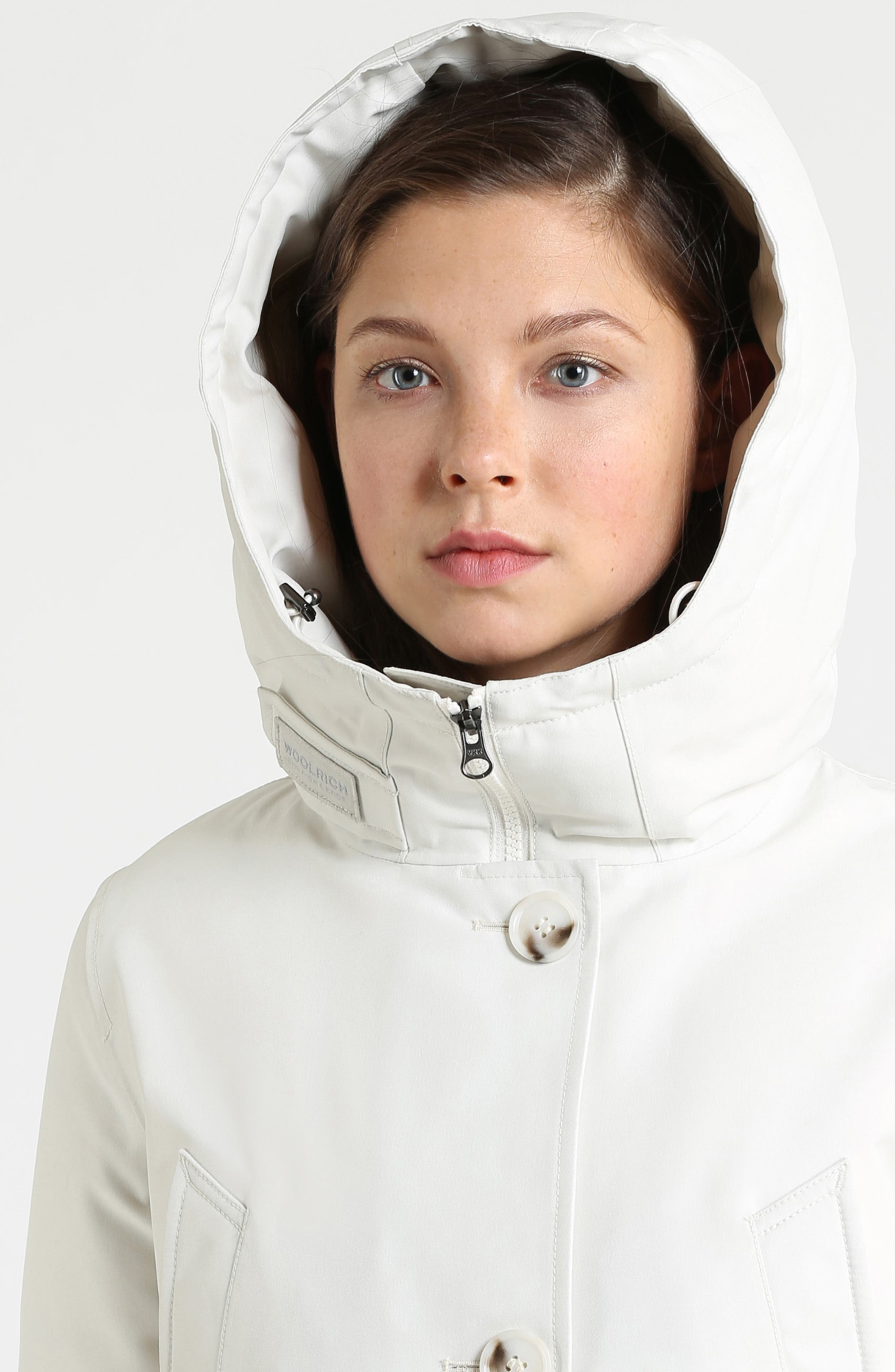 Mountain Gore-Tex<sup>®</sup> Hooded Down Parka,                             Alternate thumbnail 6, color,                             WHITE IGLOO